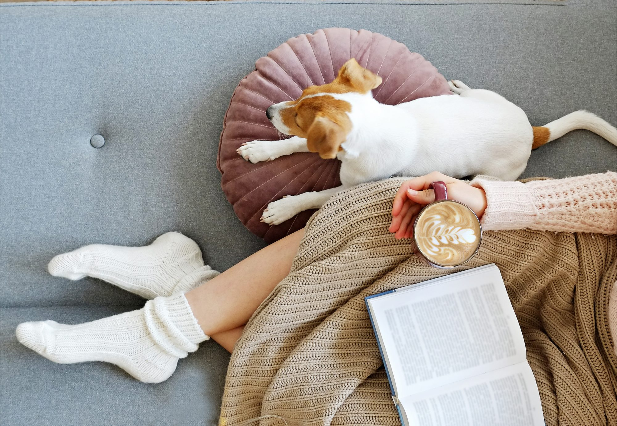best-warming-socks: Young woman and her adorable jack russell terrier puppy sitting on couch cozied up, covered with blanket and warm socks