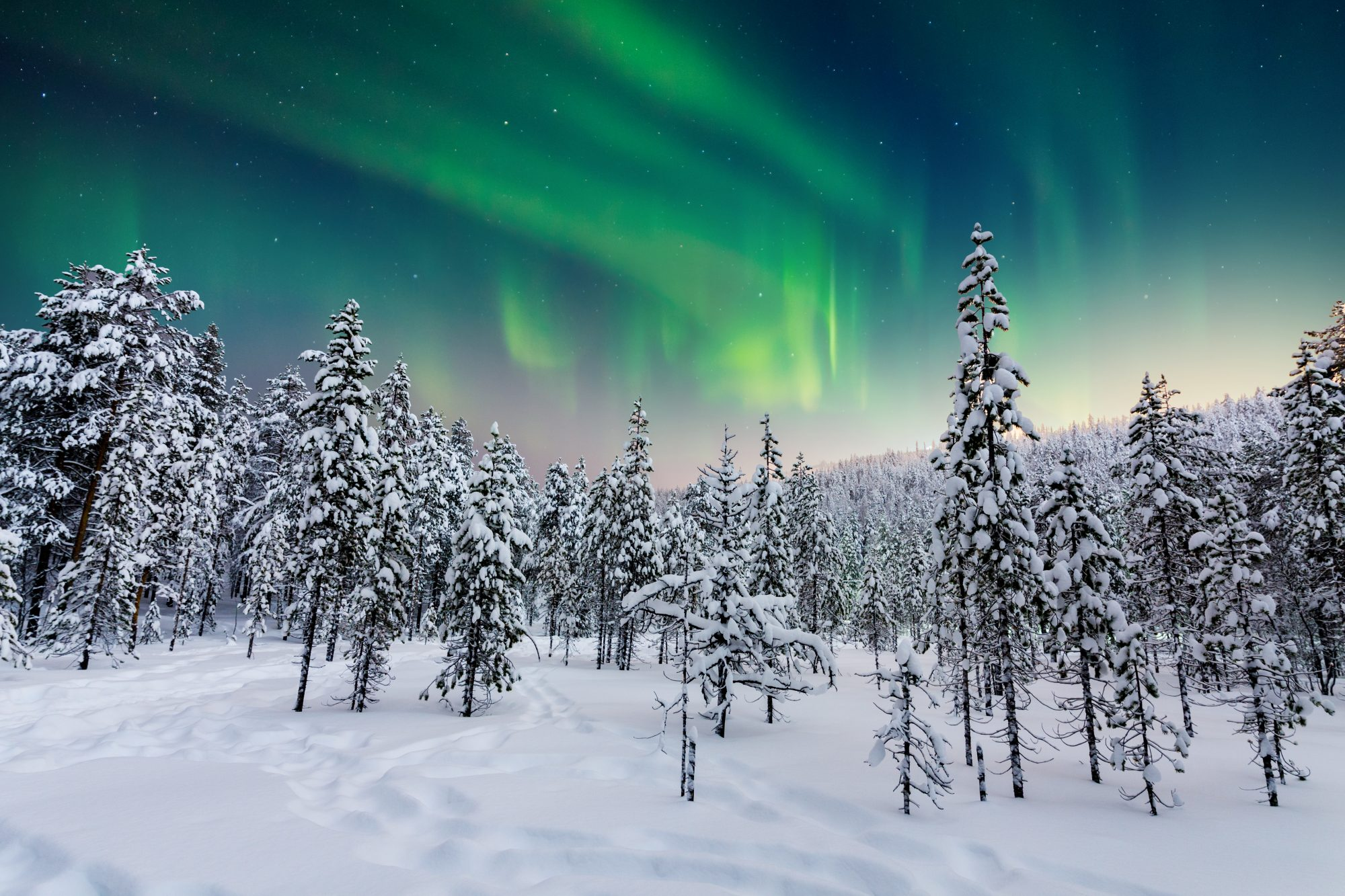 this-is-arctic-name-northern-lights-after-your-valentine