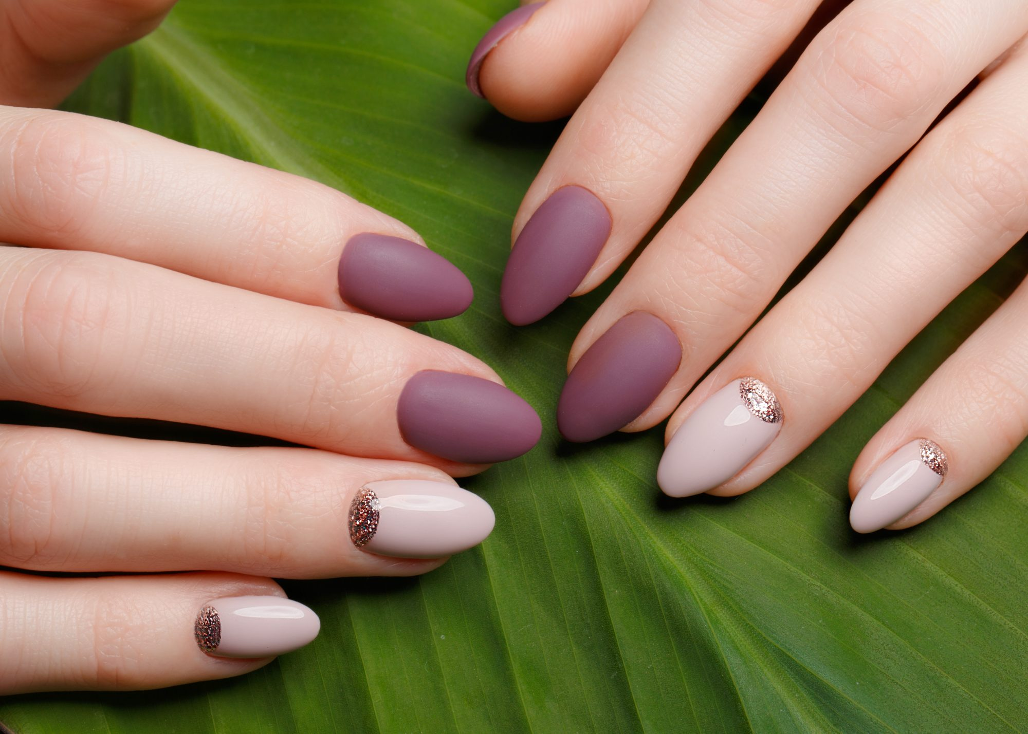 quick-dry-nail-polishes: neat manicure on female hands on a background of green leaves