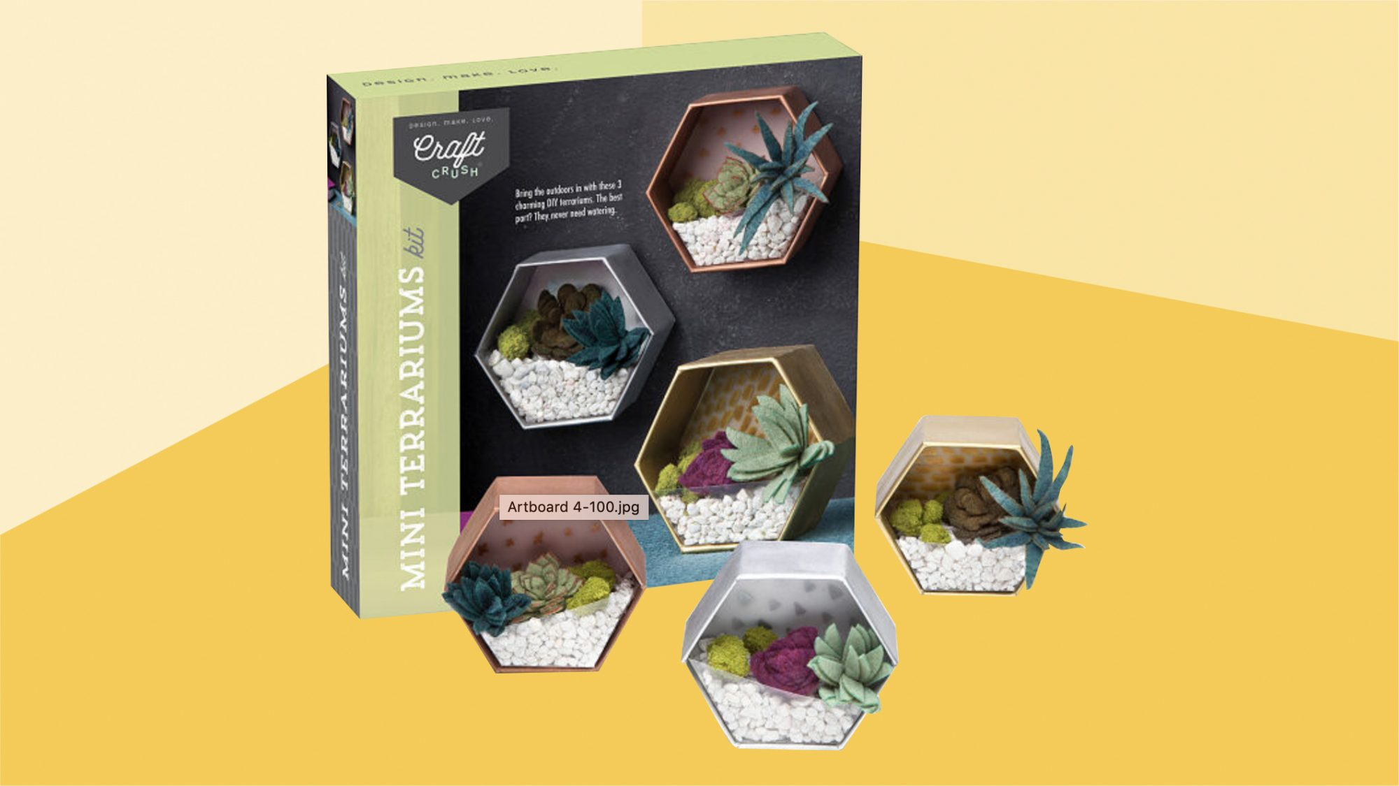 tween-teen-gifts: Mini Terrarium DIY Kit