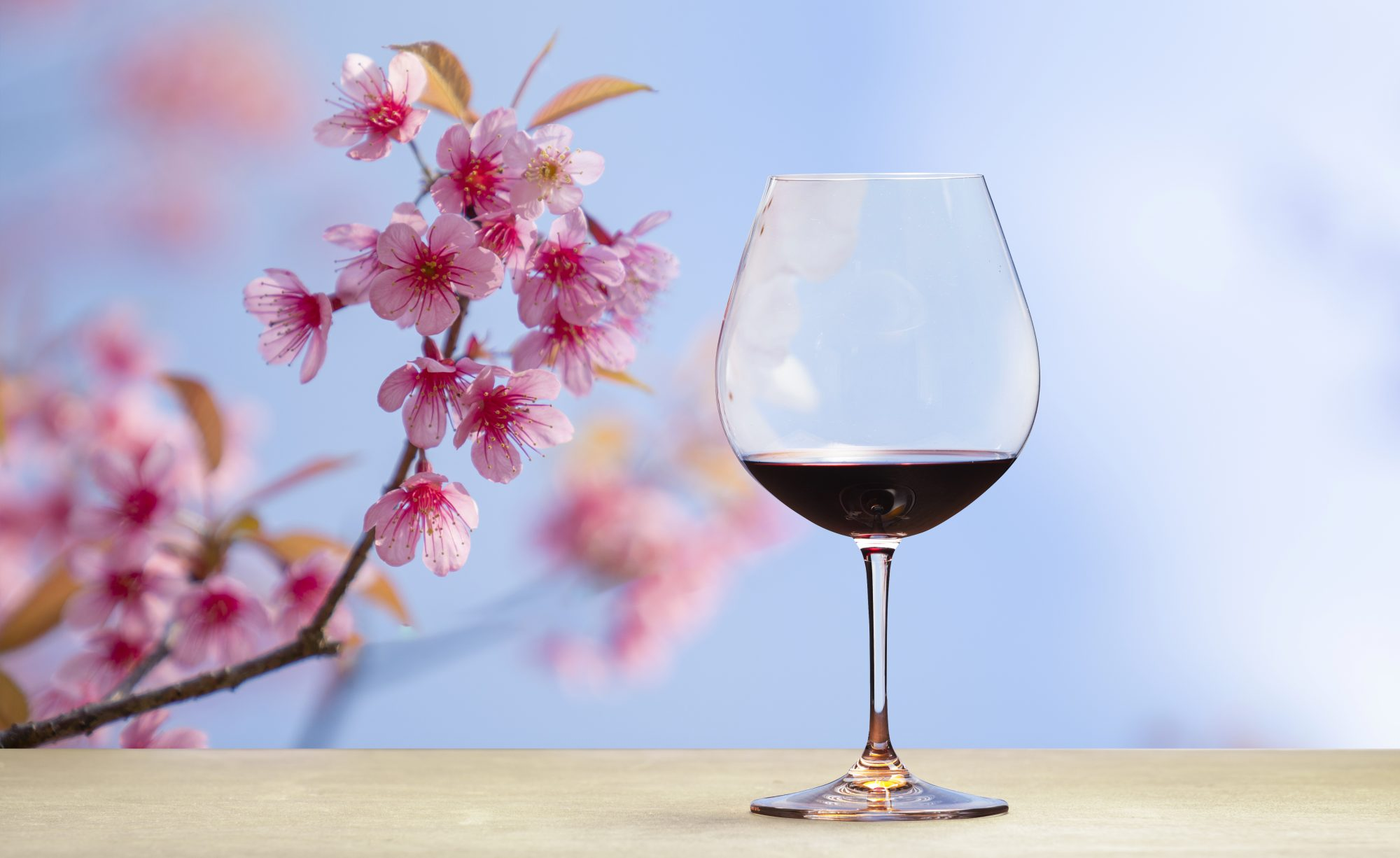best-spring-wines: glass of red wine and orchid