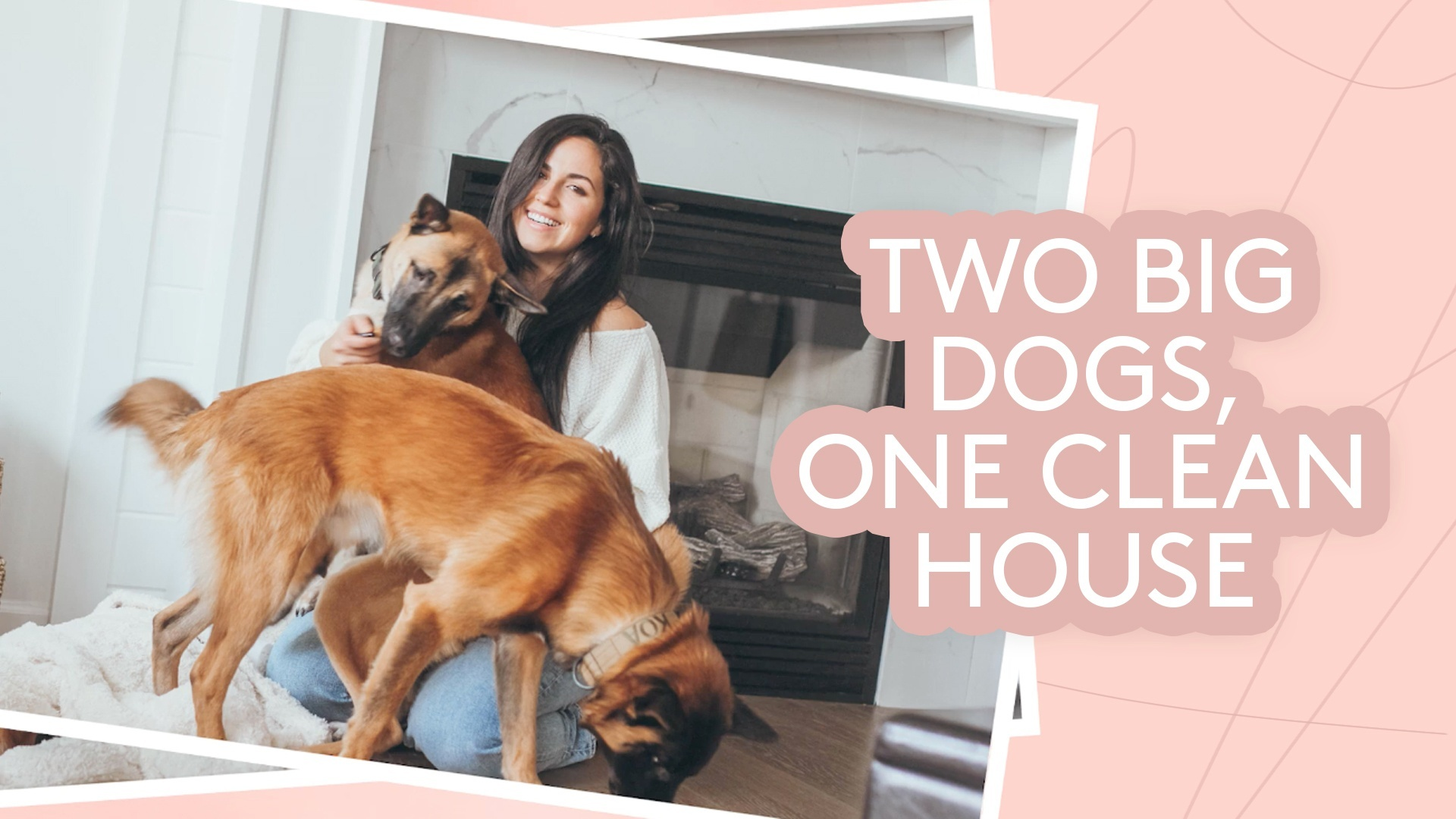 Simply Video: host Haley Cairo and dogs