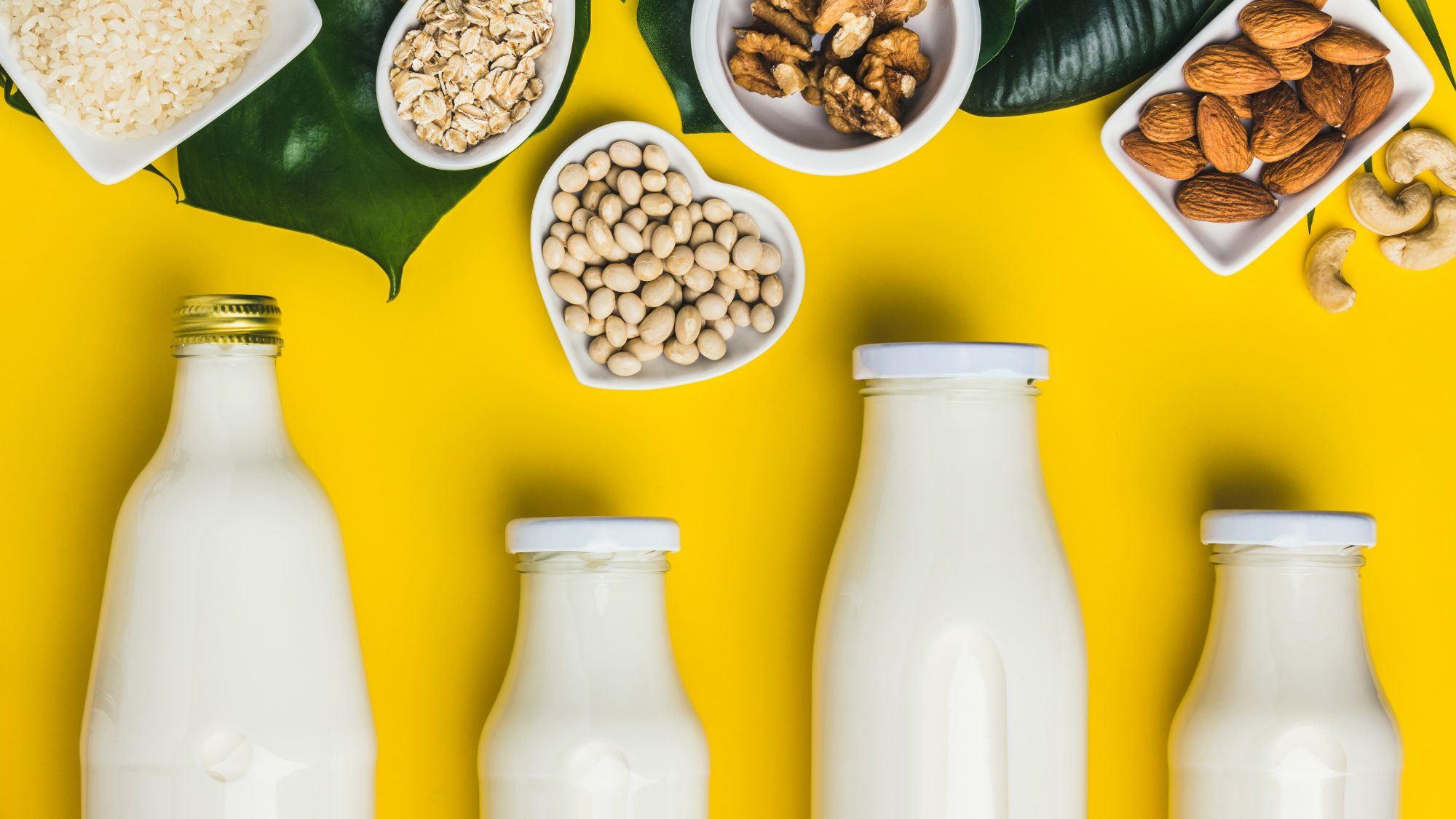 Types-of-dairy-free-milk-guide