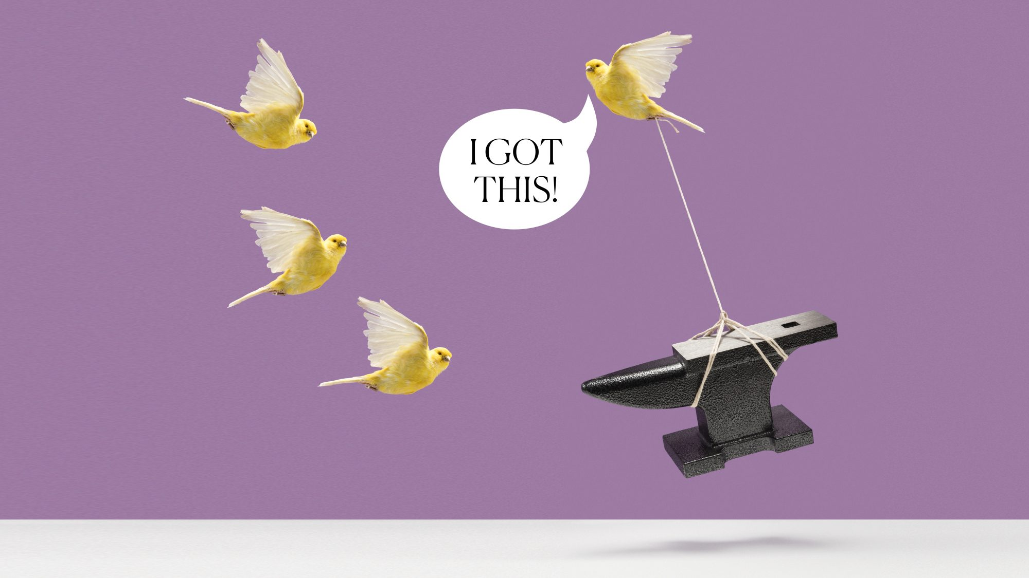 """How to Be More Confident: Expert Tips for Boosting Confidence: birds carrying an anvil """"I got this!"""""""