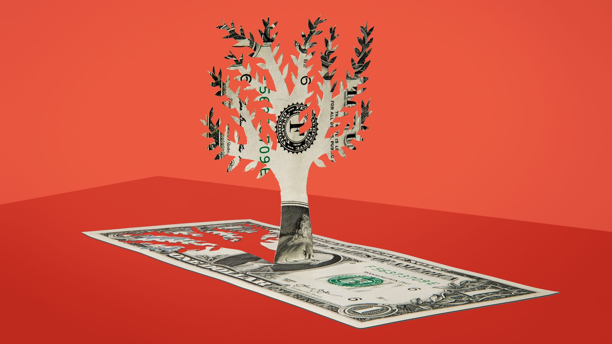 financial planner or advisor guide - money tree on red background