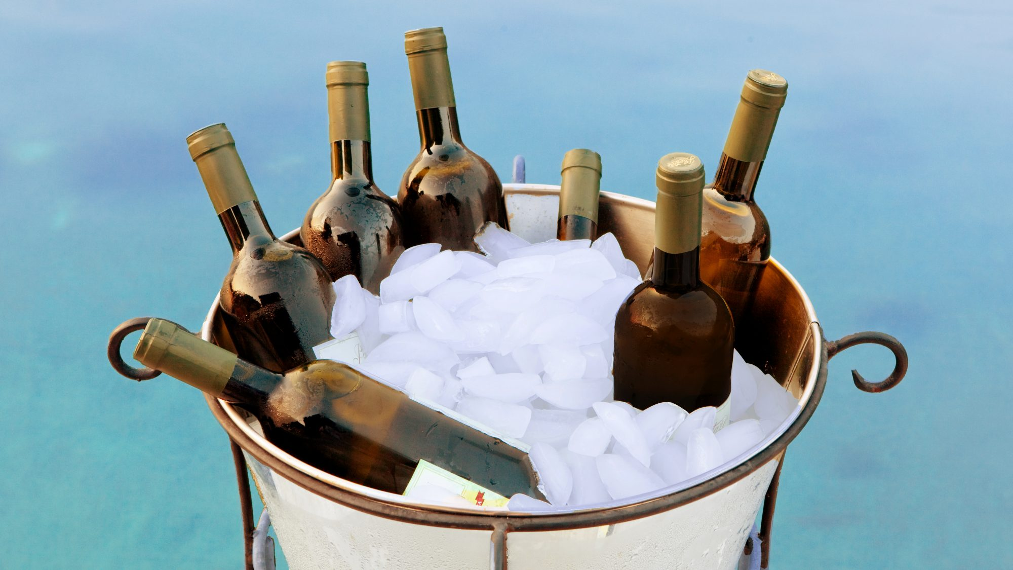 red-wines-to-serve-chilled: ice bucket of wine