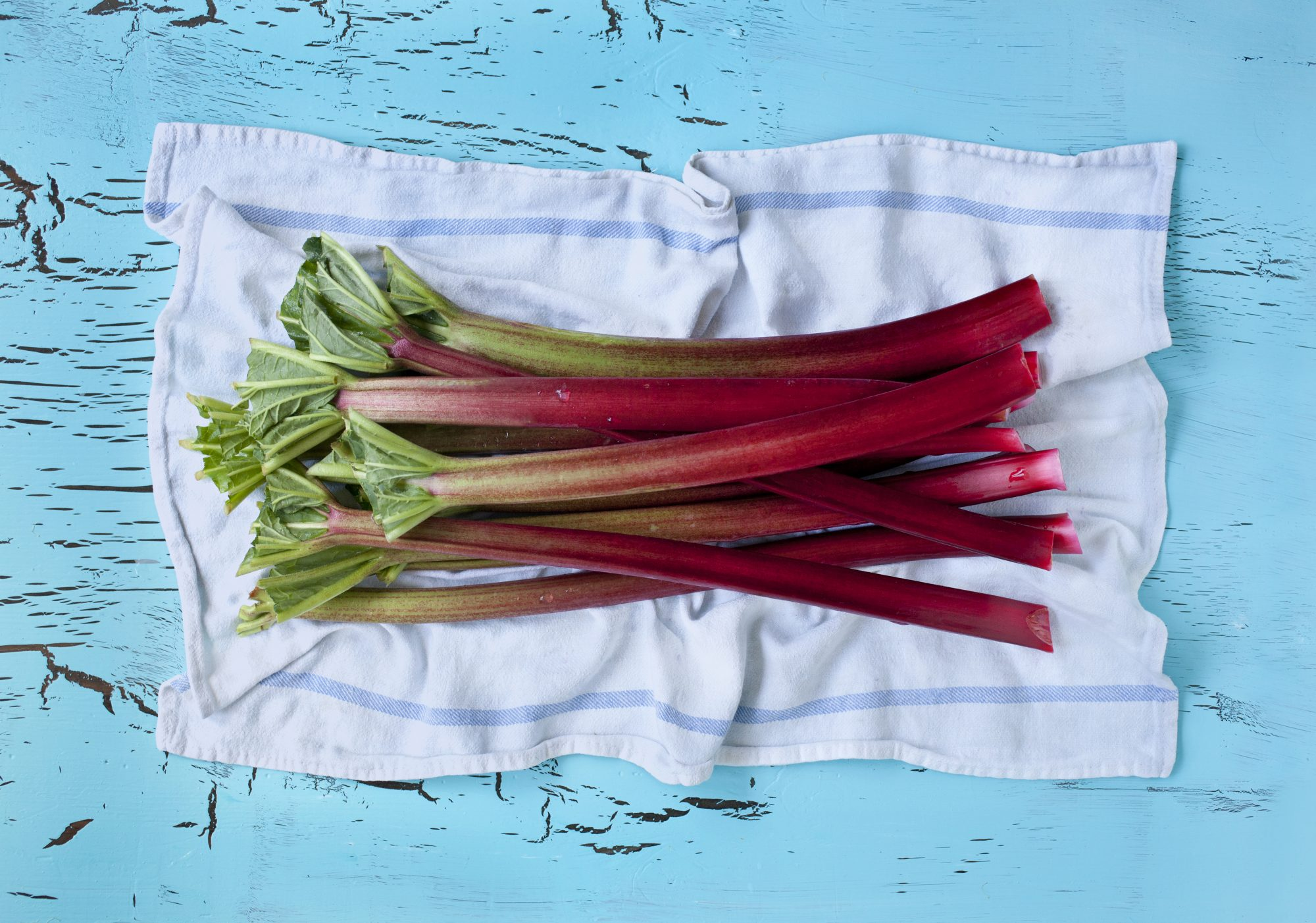 how-to-store-rhubarb