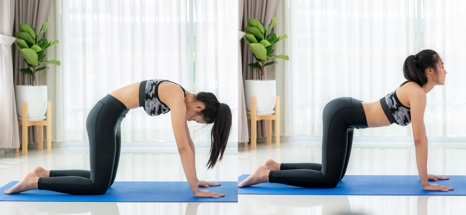 Yoga Poses to Relieve Muscle Tension: cat/cow yoga stretch