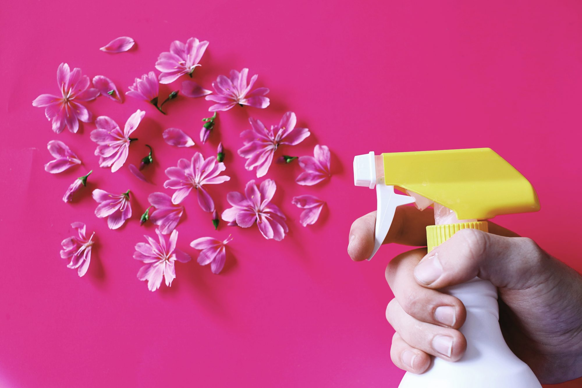 Spring Clean Your House Without Chemicals, spray bottle and flowers