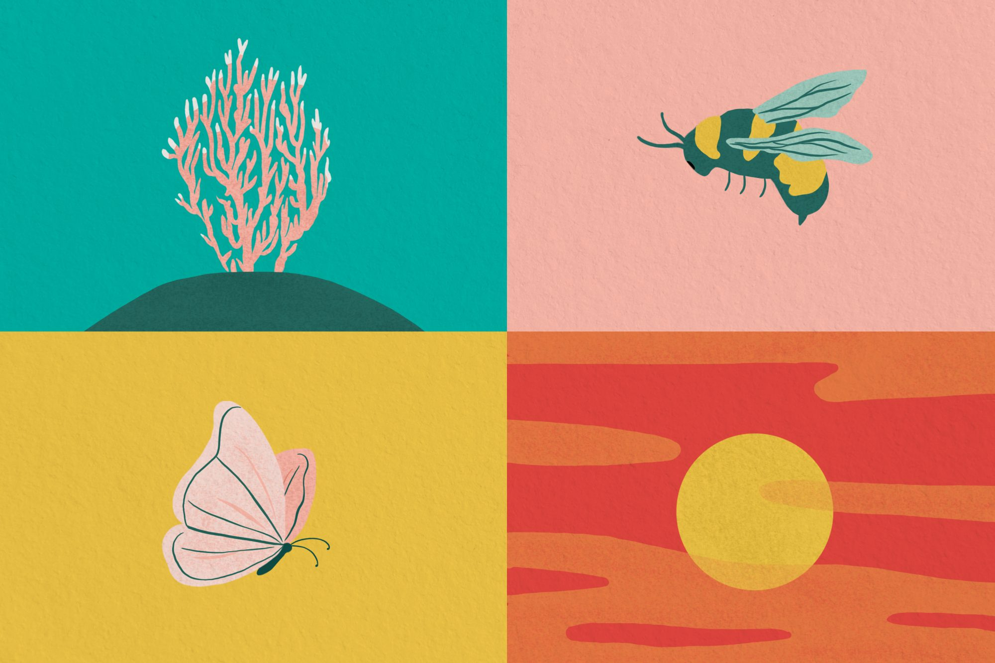 how food systems affects the environment: coral reef, bees, butterfly, sunset