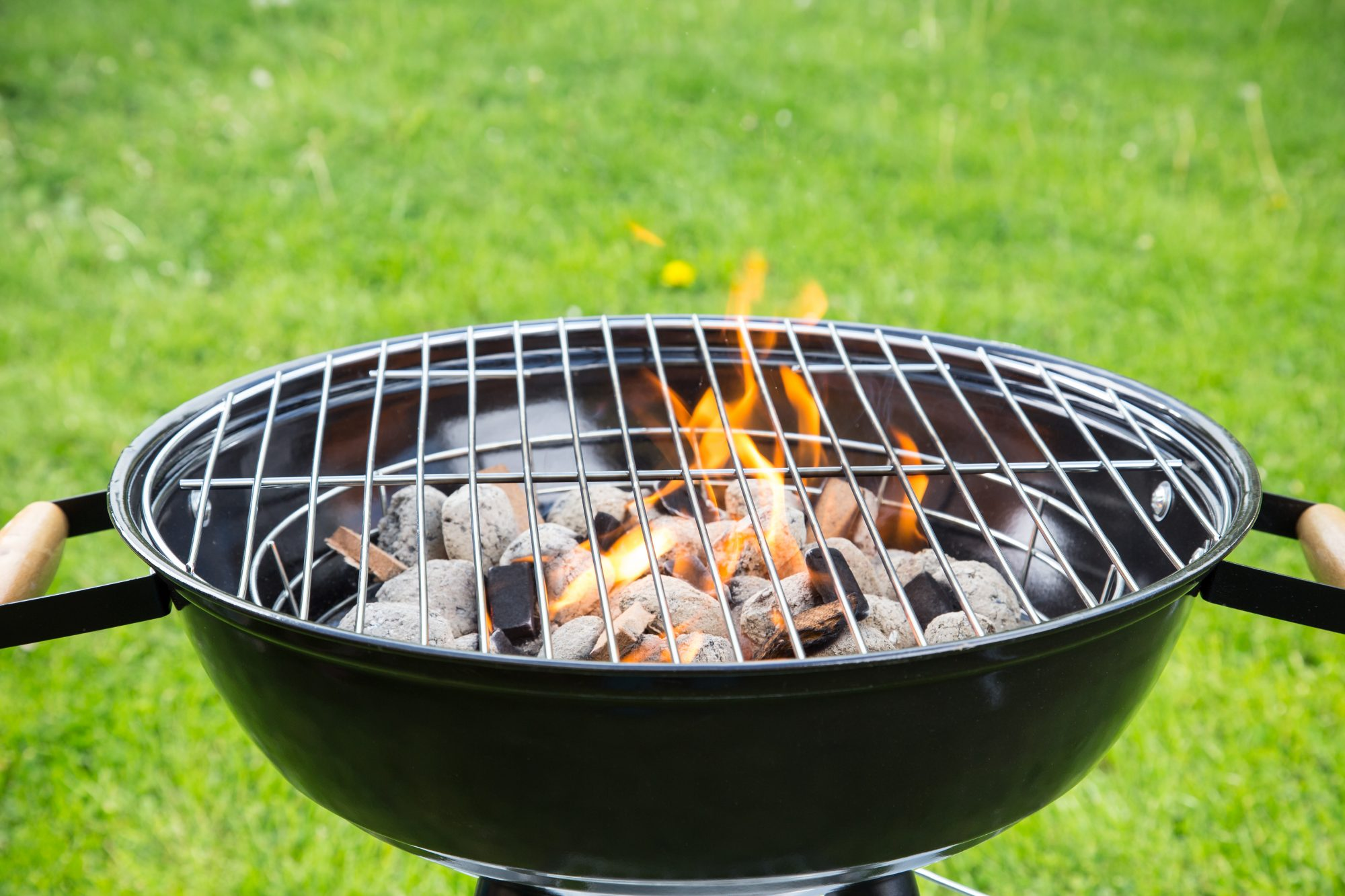 best BBQ grill-cleaners