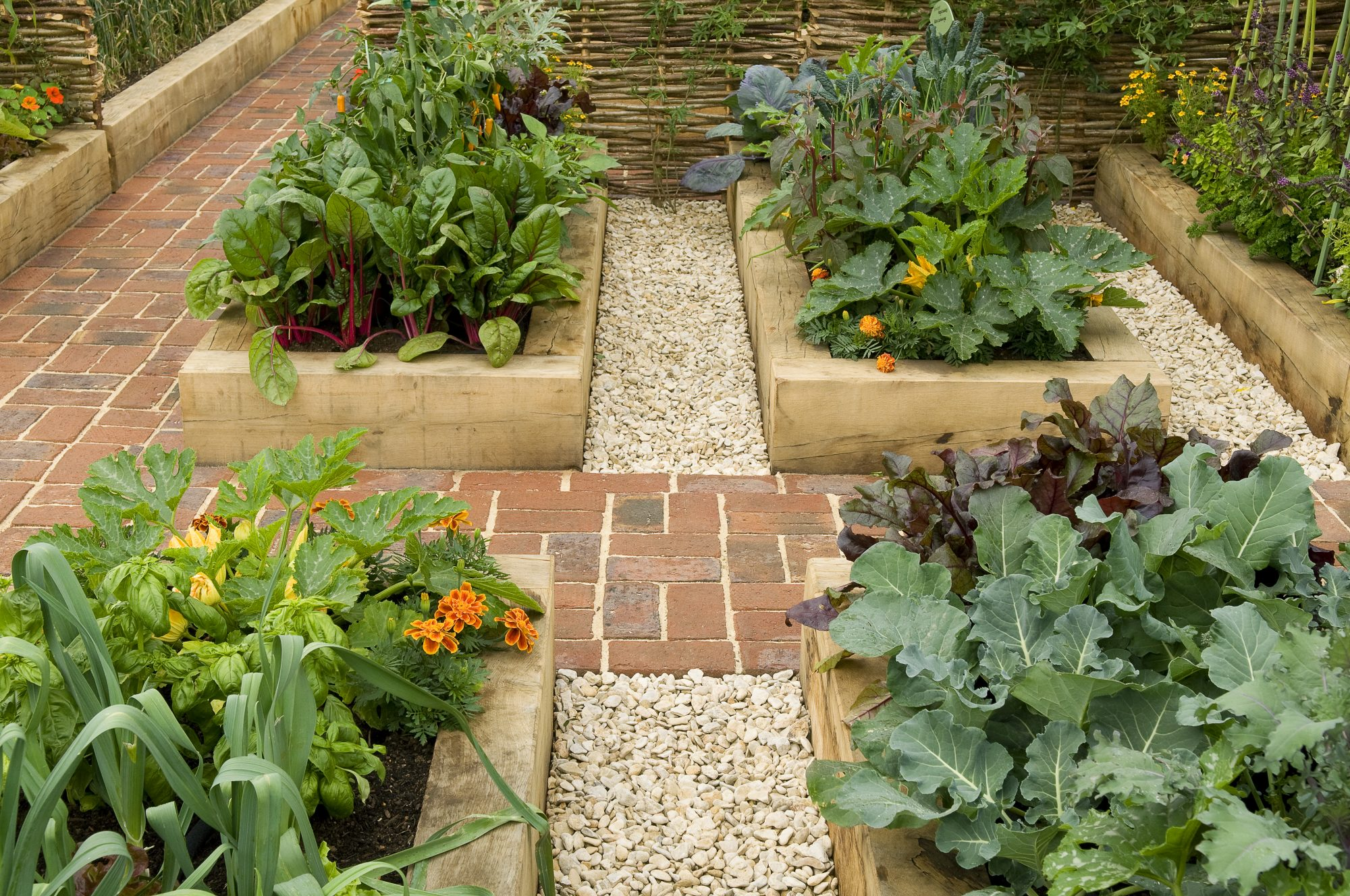 growing-food-mistakes: vegetable garden