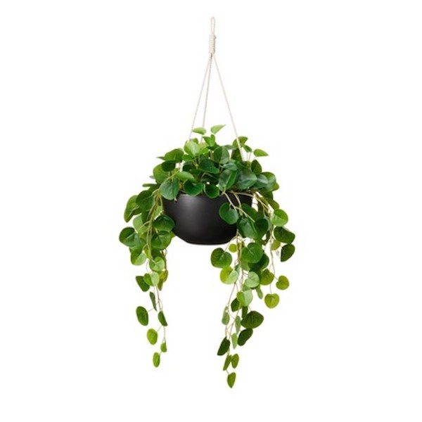 Hilton Carter Target String of Hearts faux plant