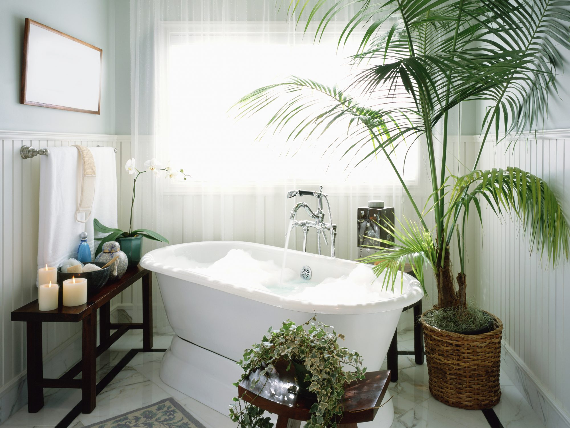 How to Take the Perfect Bath, According to Science: Bubble bath with potted plants