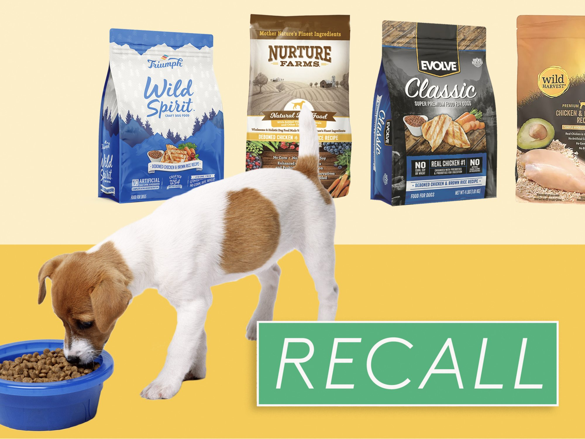 Sunshine Mills Recalls 6 Kinds of Dog Food Because of Potentially High Levels of Aflatoxins