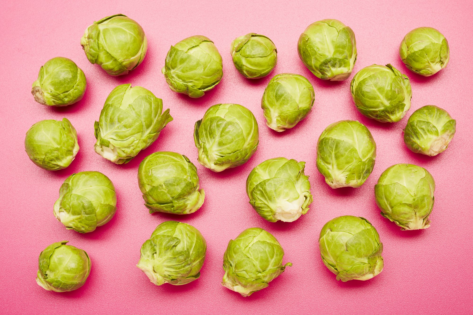 Are Brussels sprouts good for you? brussels sprouts on a pink background