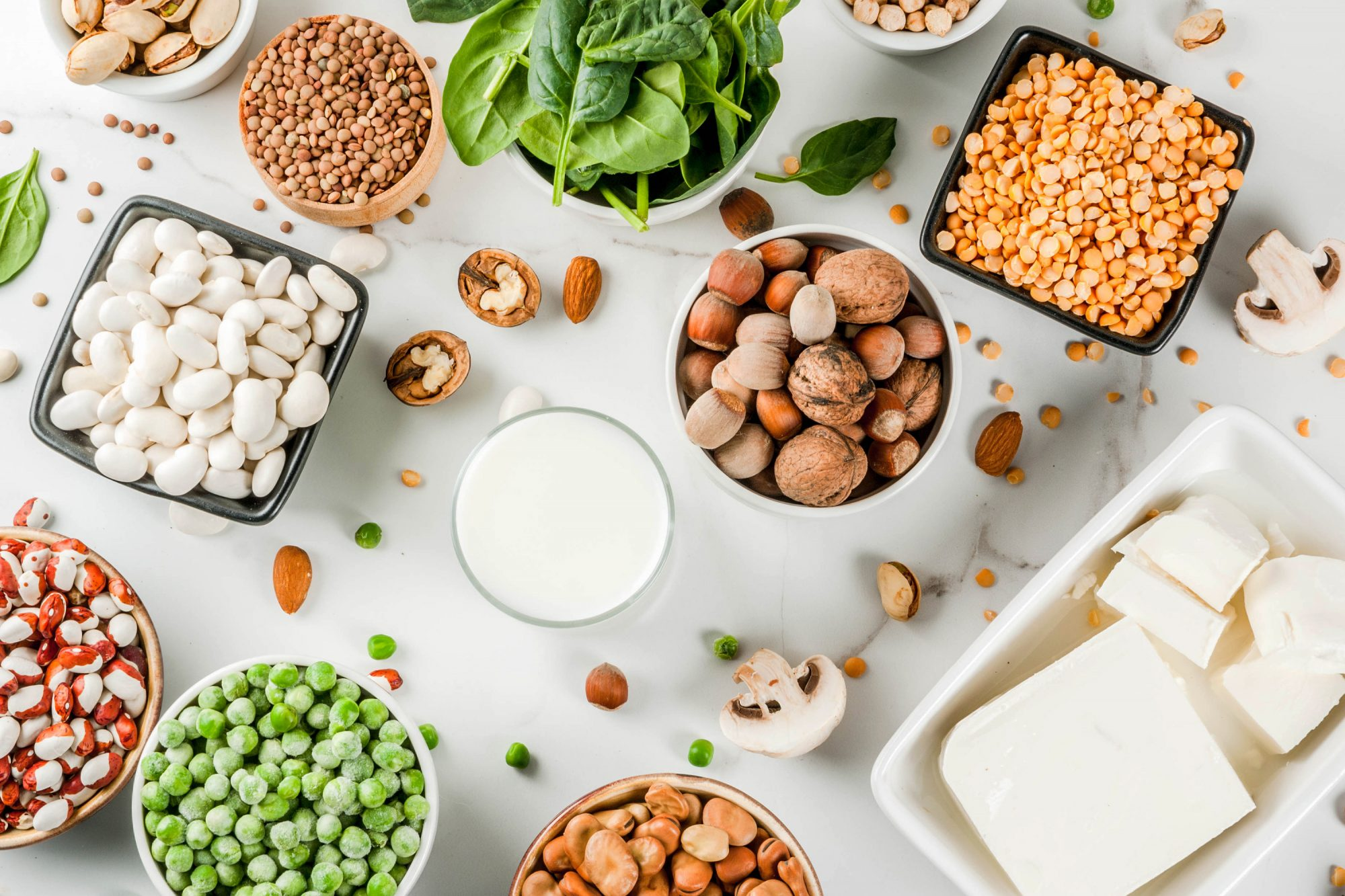 What Foods Are High in Protein? High-protein foods: nuts and legumes