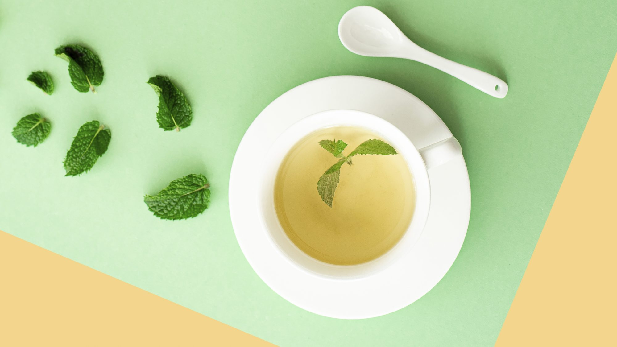 herbal mint tea in a white cup on a light green background: nausea treatment