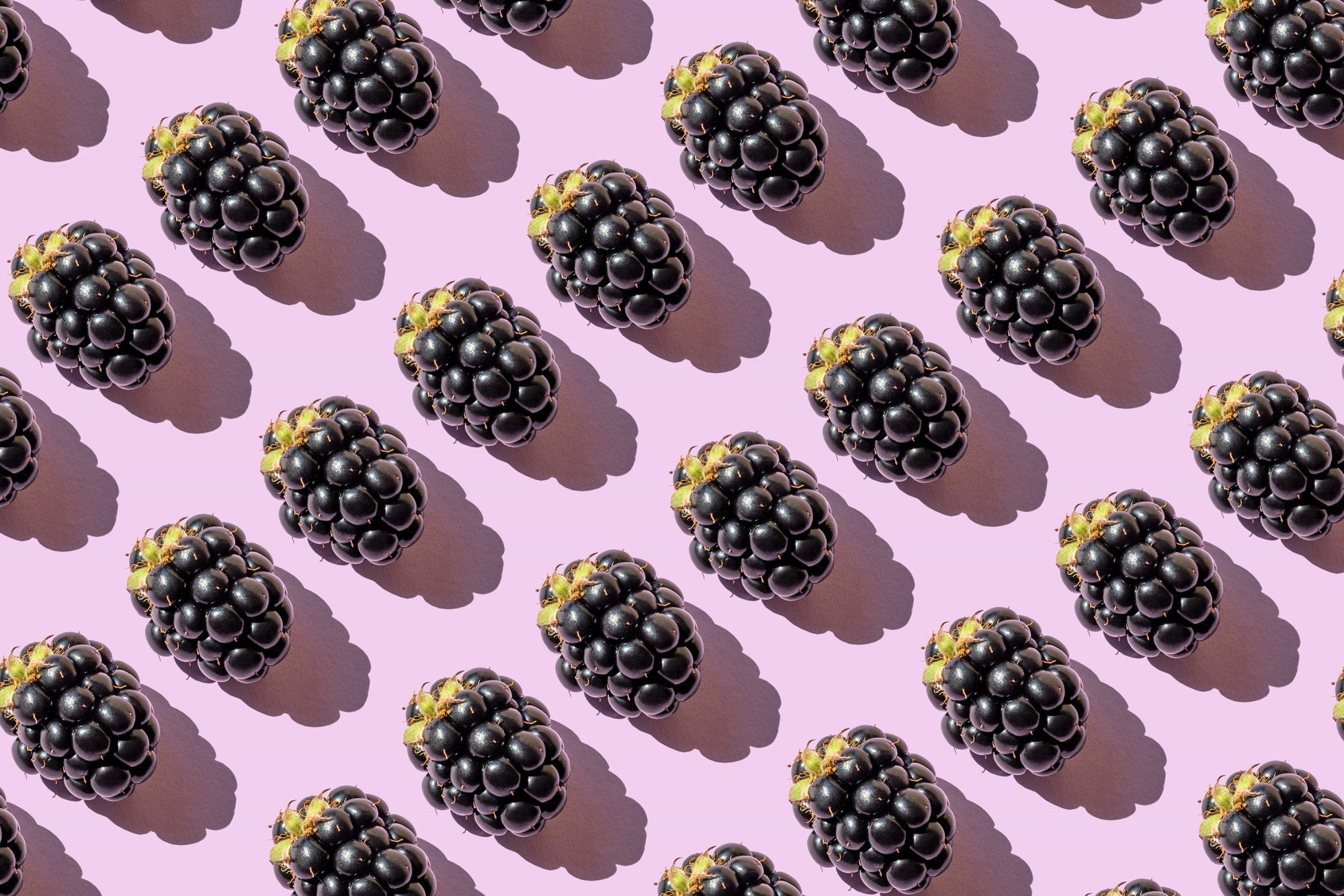 Repeated blackberries on the purple background
