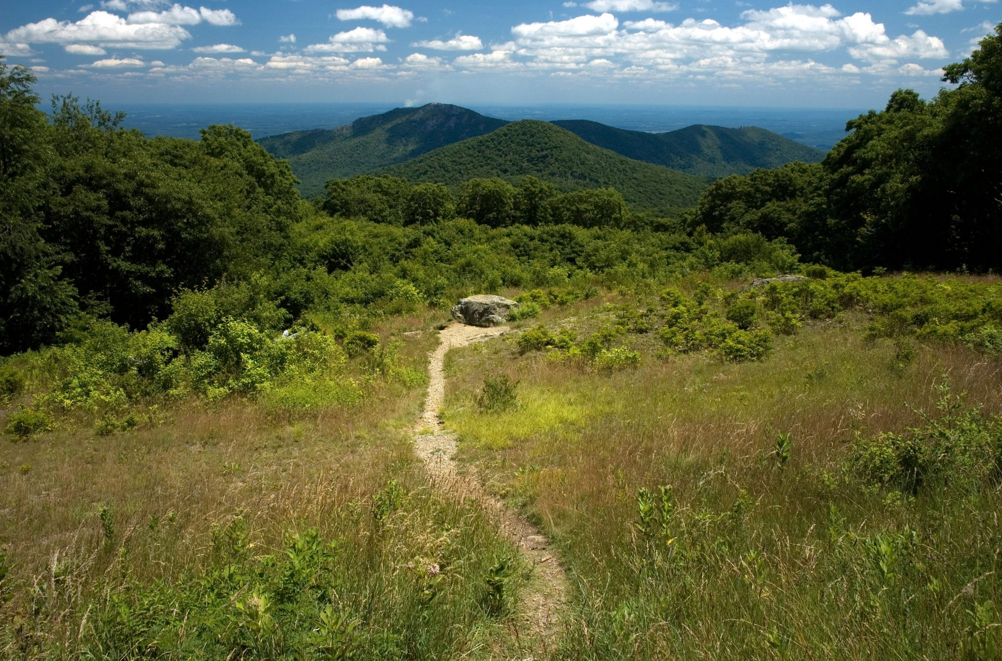 Shenandoah Trail in Virginia