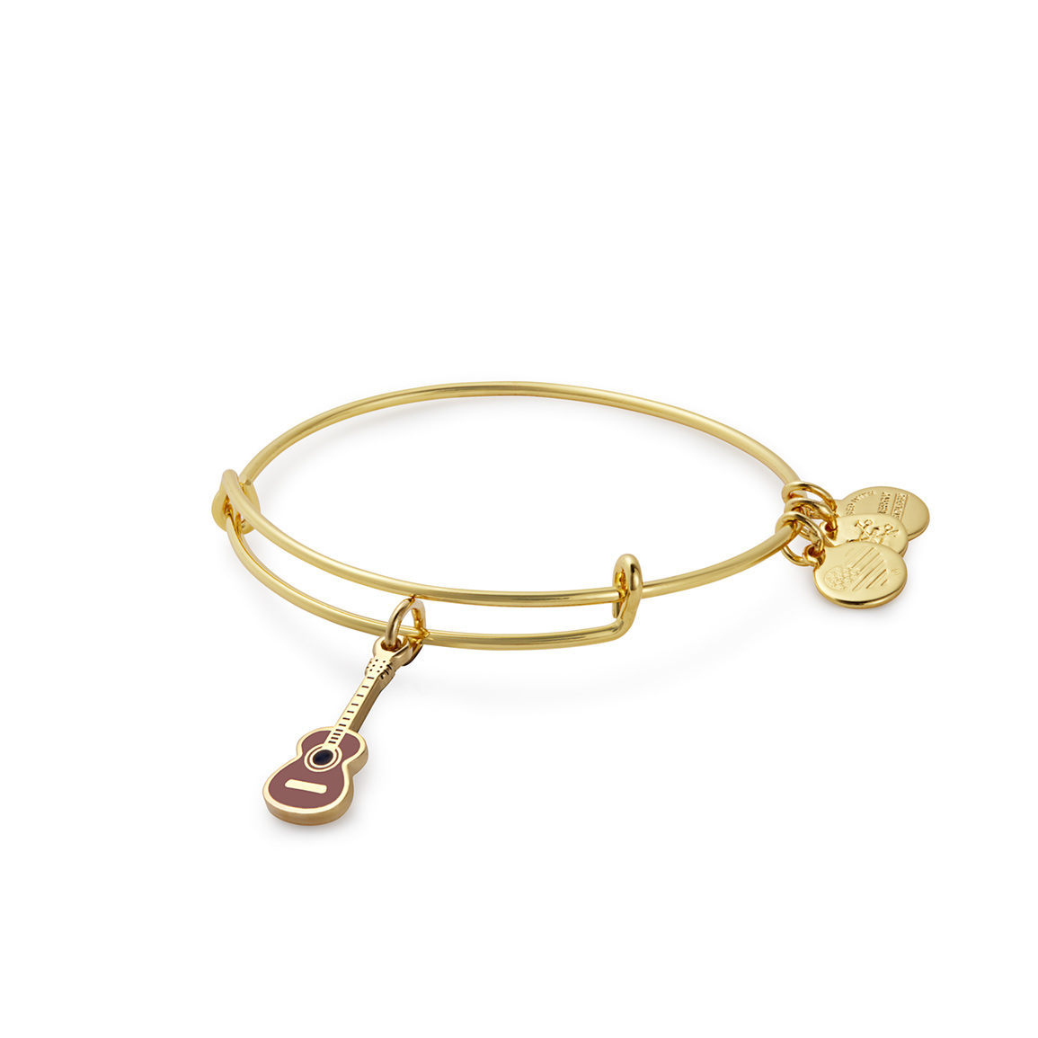 Alex and Ani Guitar Charm Bangle