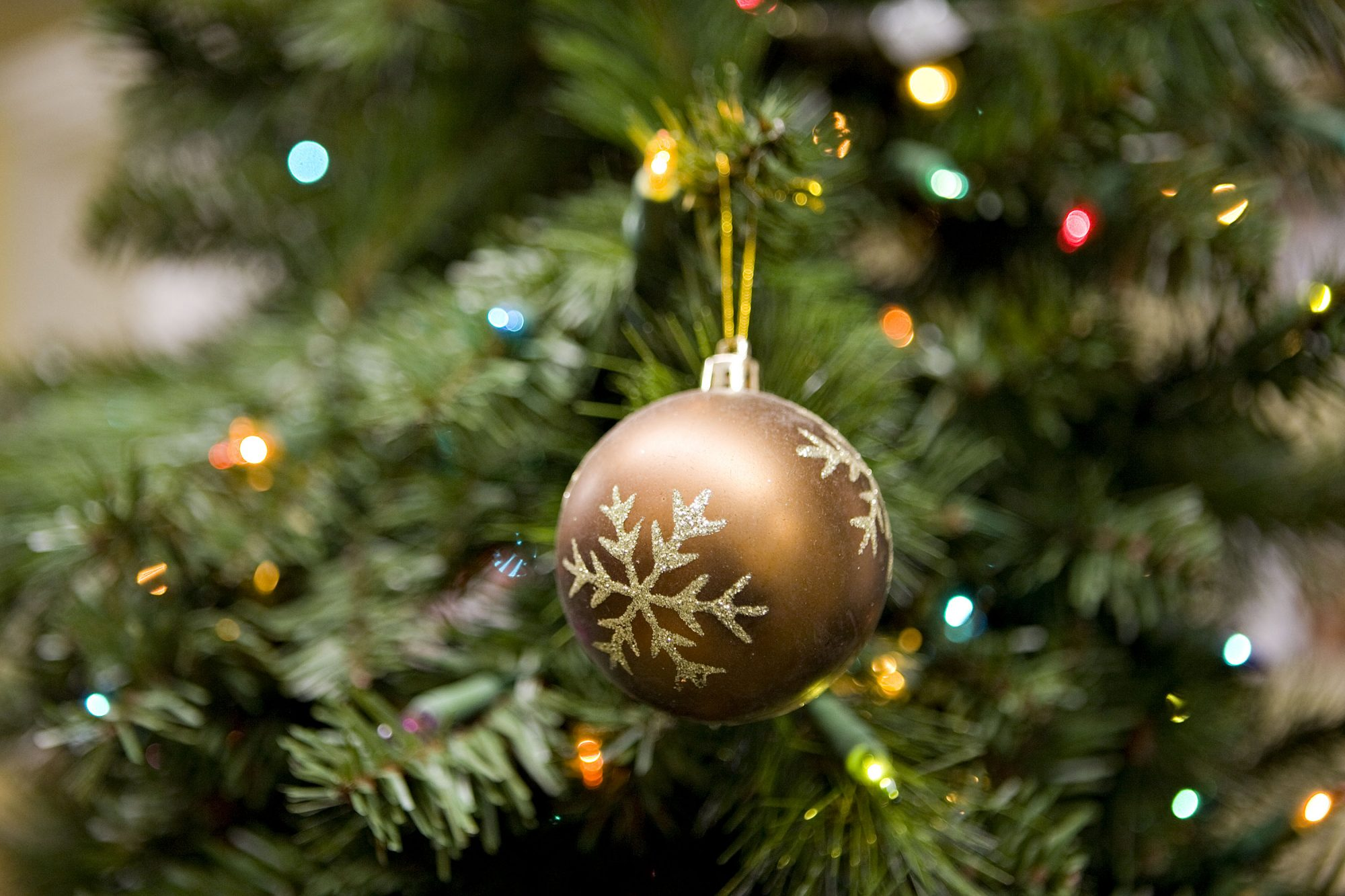 Ornament on Artificial Christmas Tree