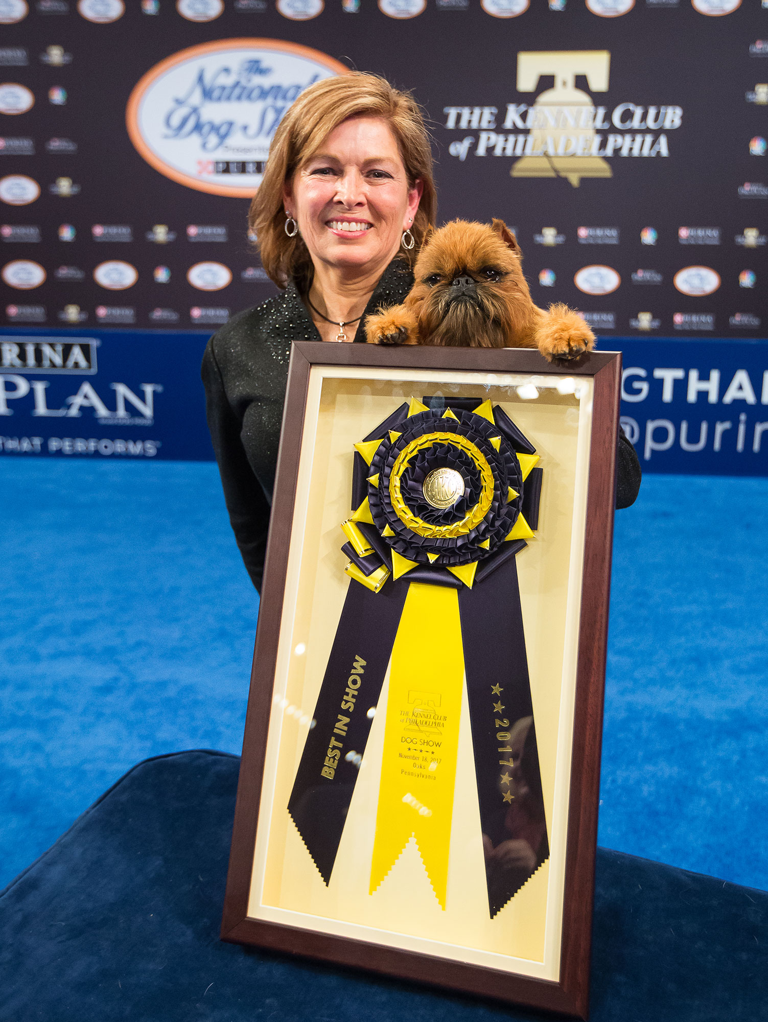 Newton the Brussels Griffon Wins Best in Show at 16th Annual National Dog Show Presented by Purina