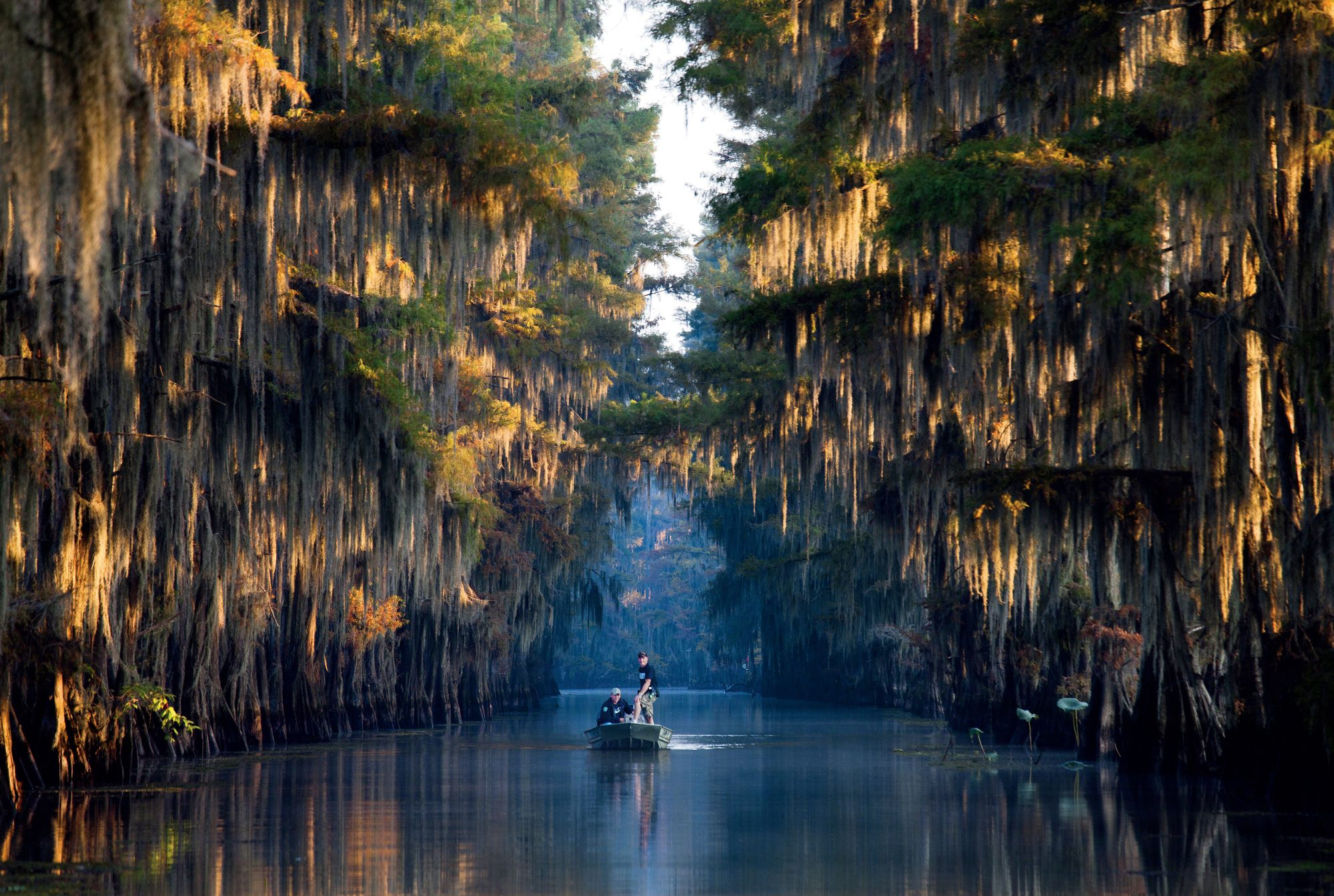 10. Caddo Lake State Park