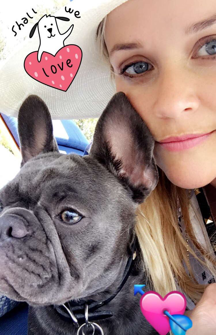 Pepper The Dog Snapchat Love