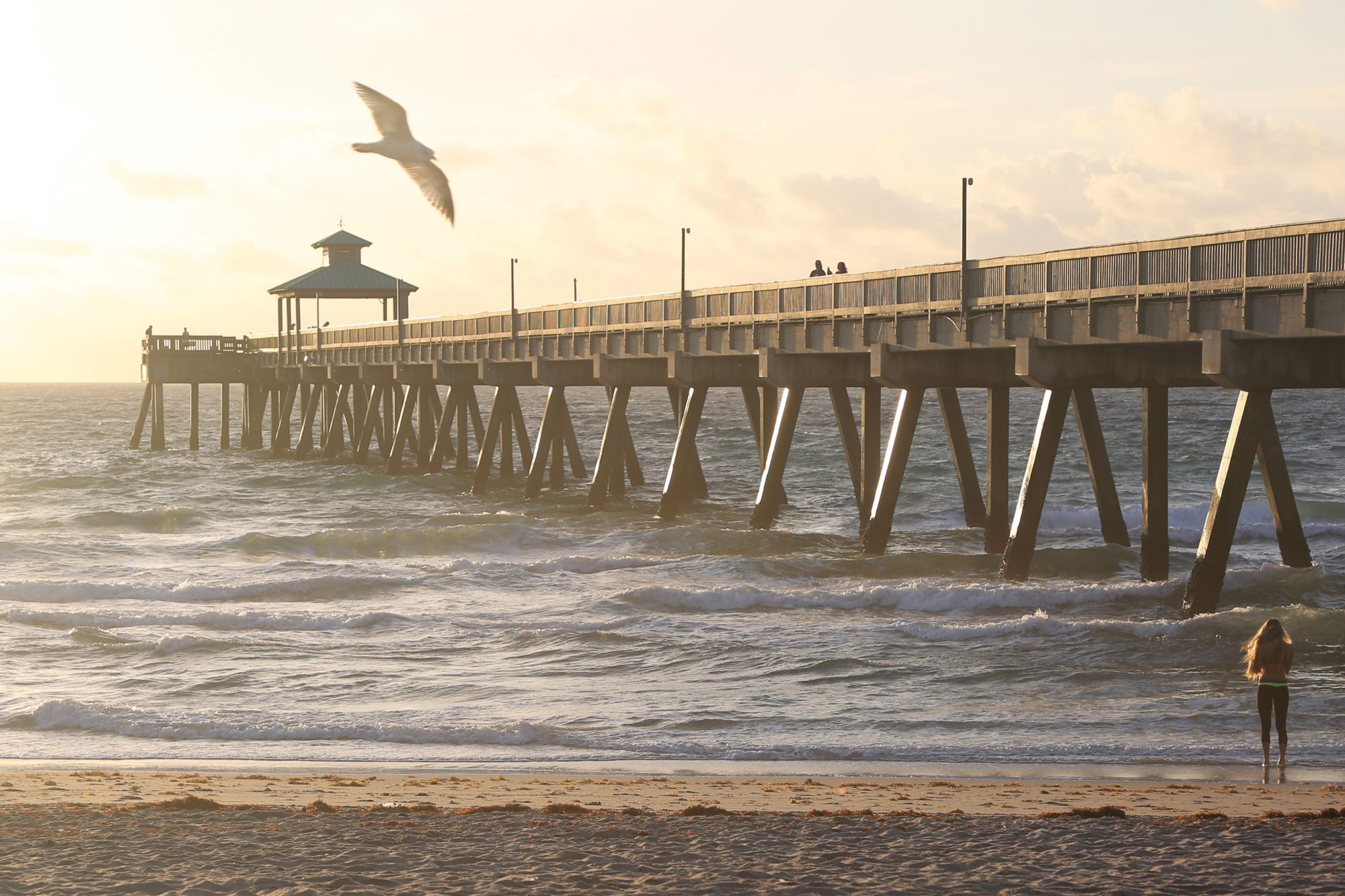 Nestled on Florida's sun-soaked southeast coast between Miami and Palm Beach, Deerfield offers an understated break from the glitz and glamour cities along this stretch of coastline are known for. Laidback beach vibes rule here, and homes just a...