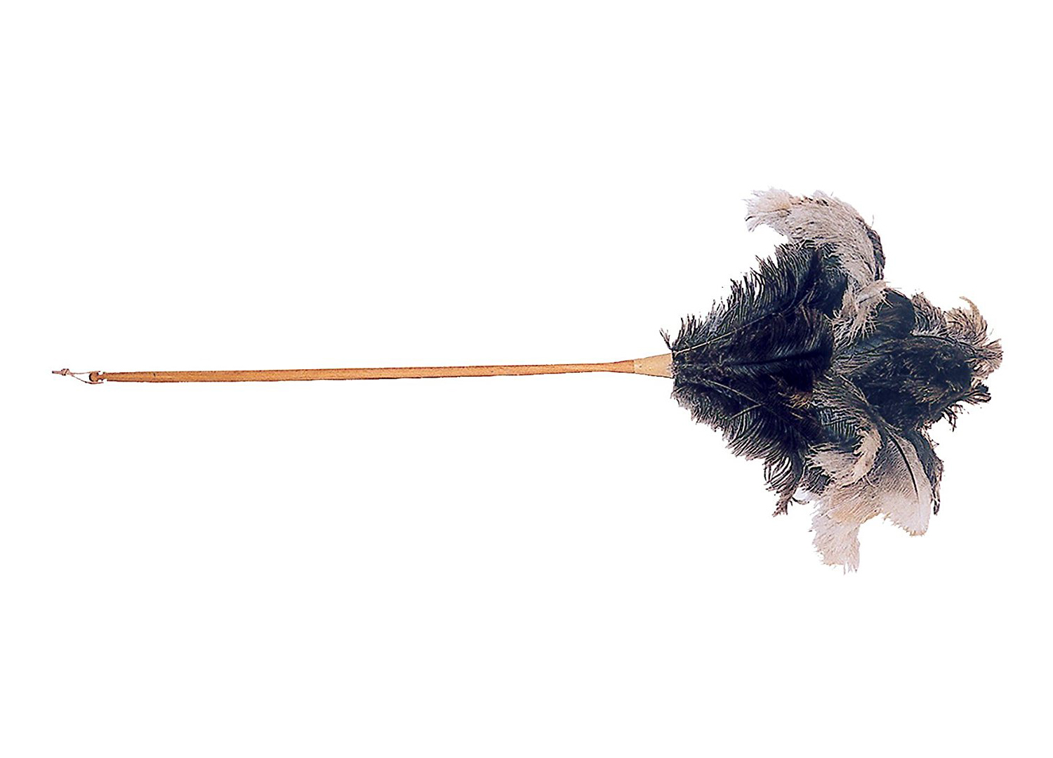 Long Handled Feather Duster