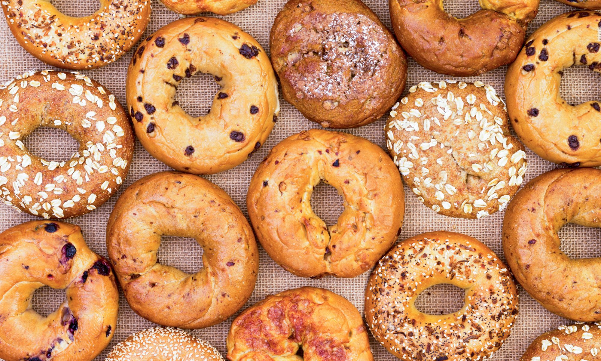 The Unlikely Bagel Star of North Carolina