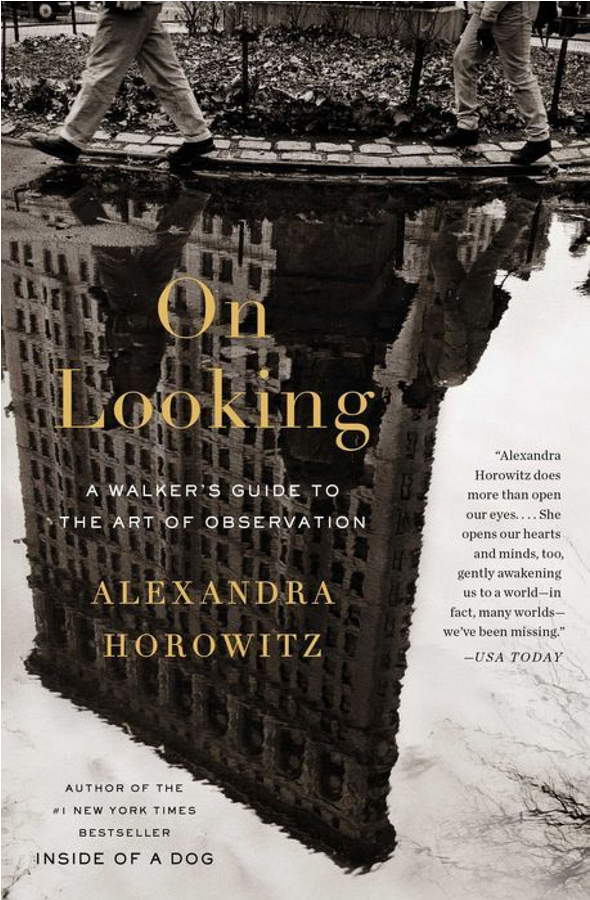 On Looking: A Walker's Guide to the Art of Observation by Alexandra Horowitz