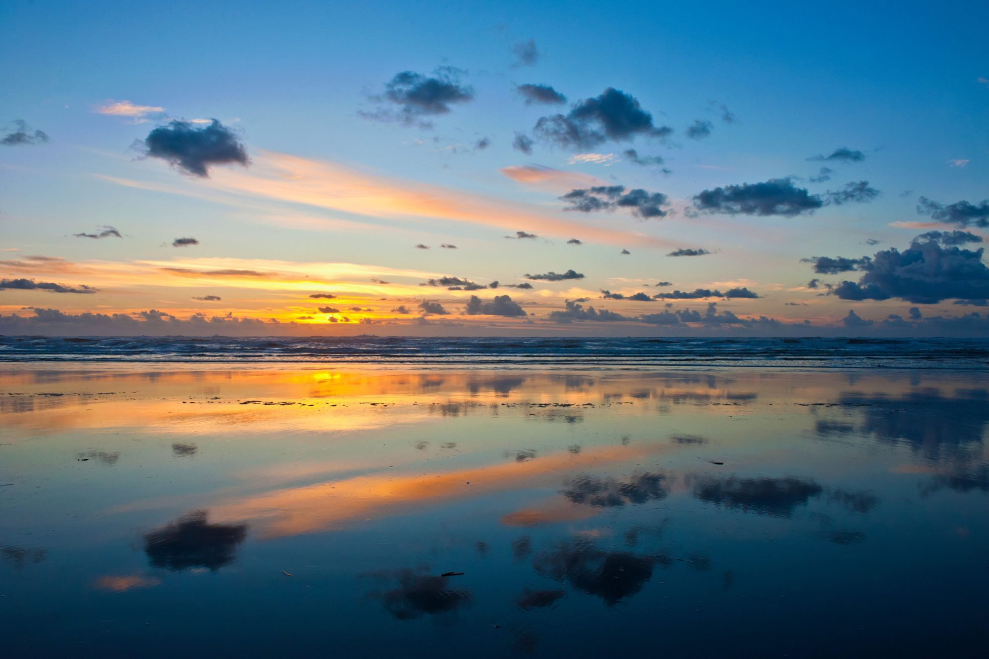 Seattle residents may already know of this West Coast beach town (Ocean Shores is just three hours west of the city), but newcomers will fall for the windswept shores and endless ocean views. Seasonal offerings include whale-watching cruises and...