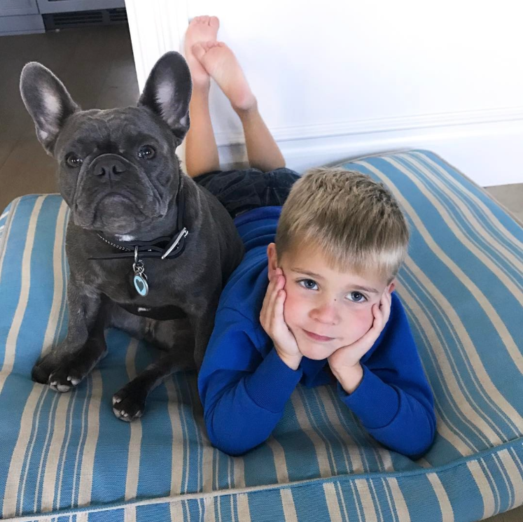 Pepper the Dog Cuddles with Reese's Son Tennessee