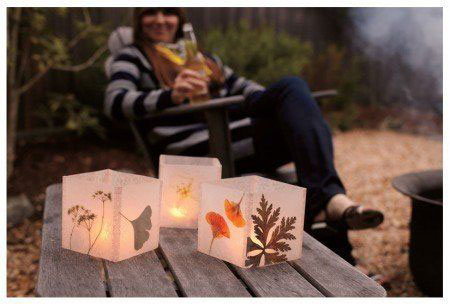 Pressed Flower and Leaf Luminarias