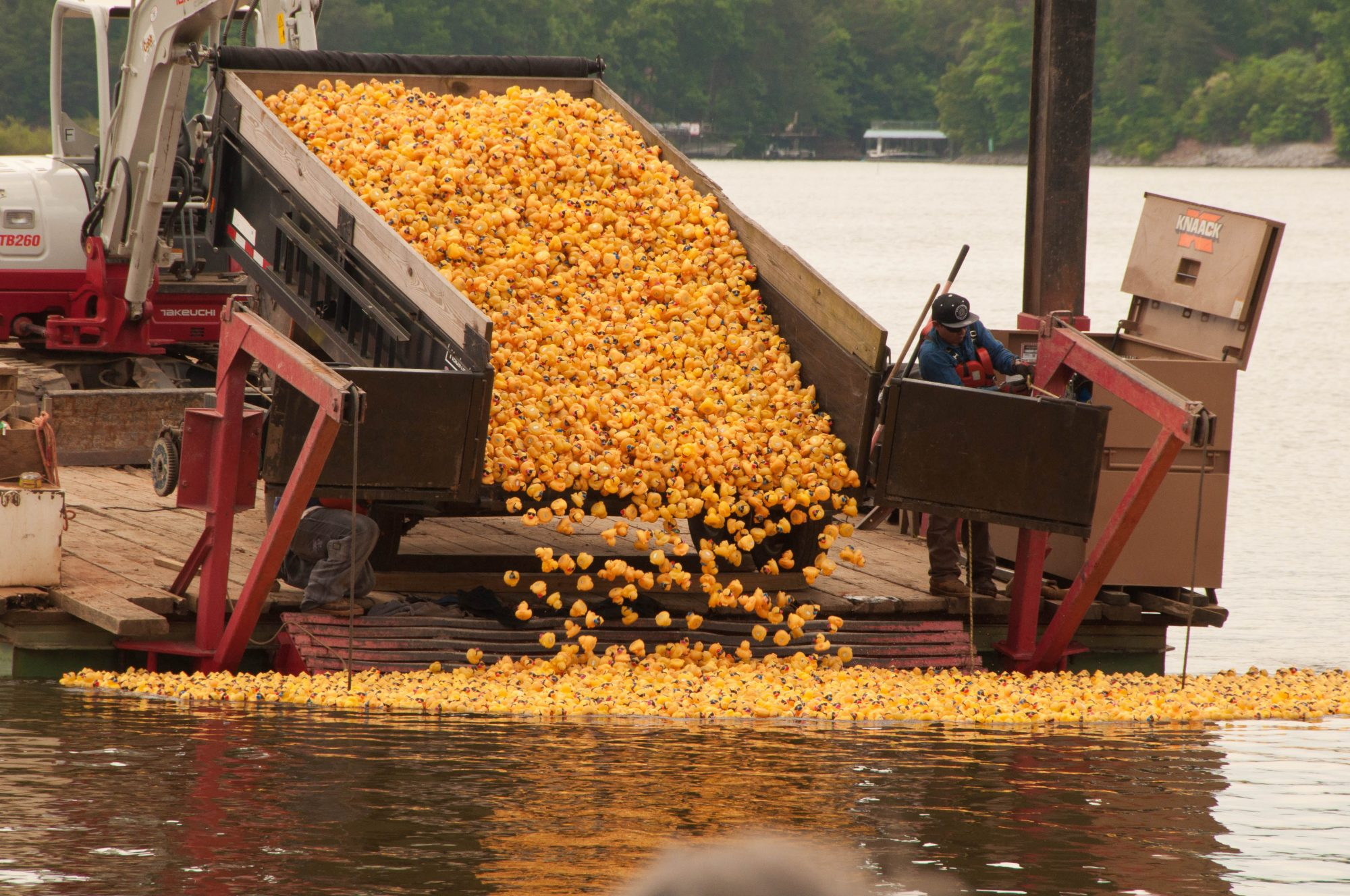 rubber duck derby lake lanier