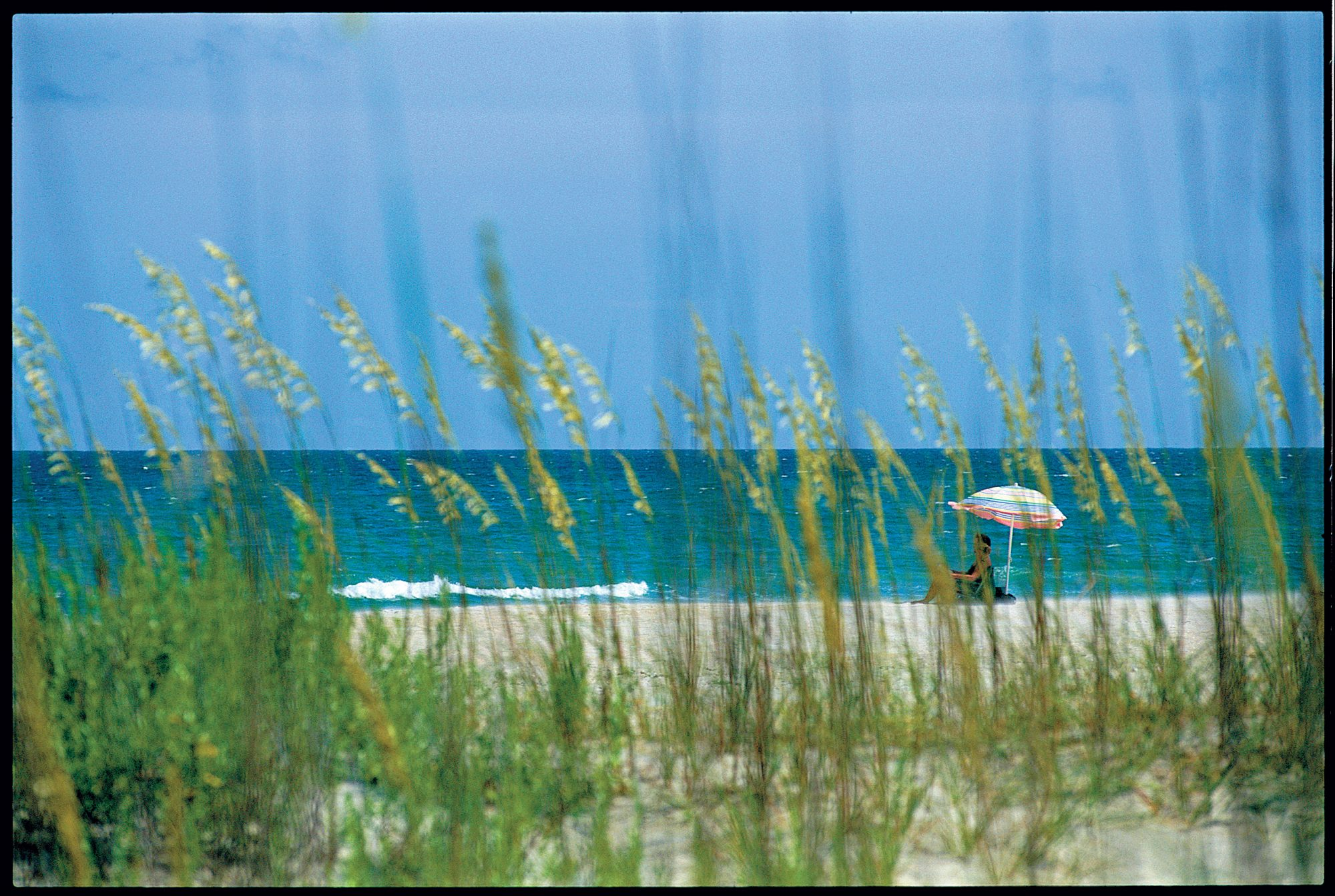 Discover Cape Lookout (promo image)