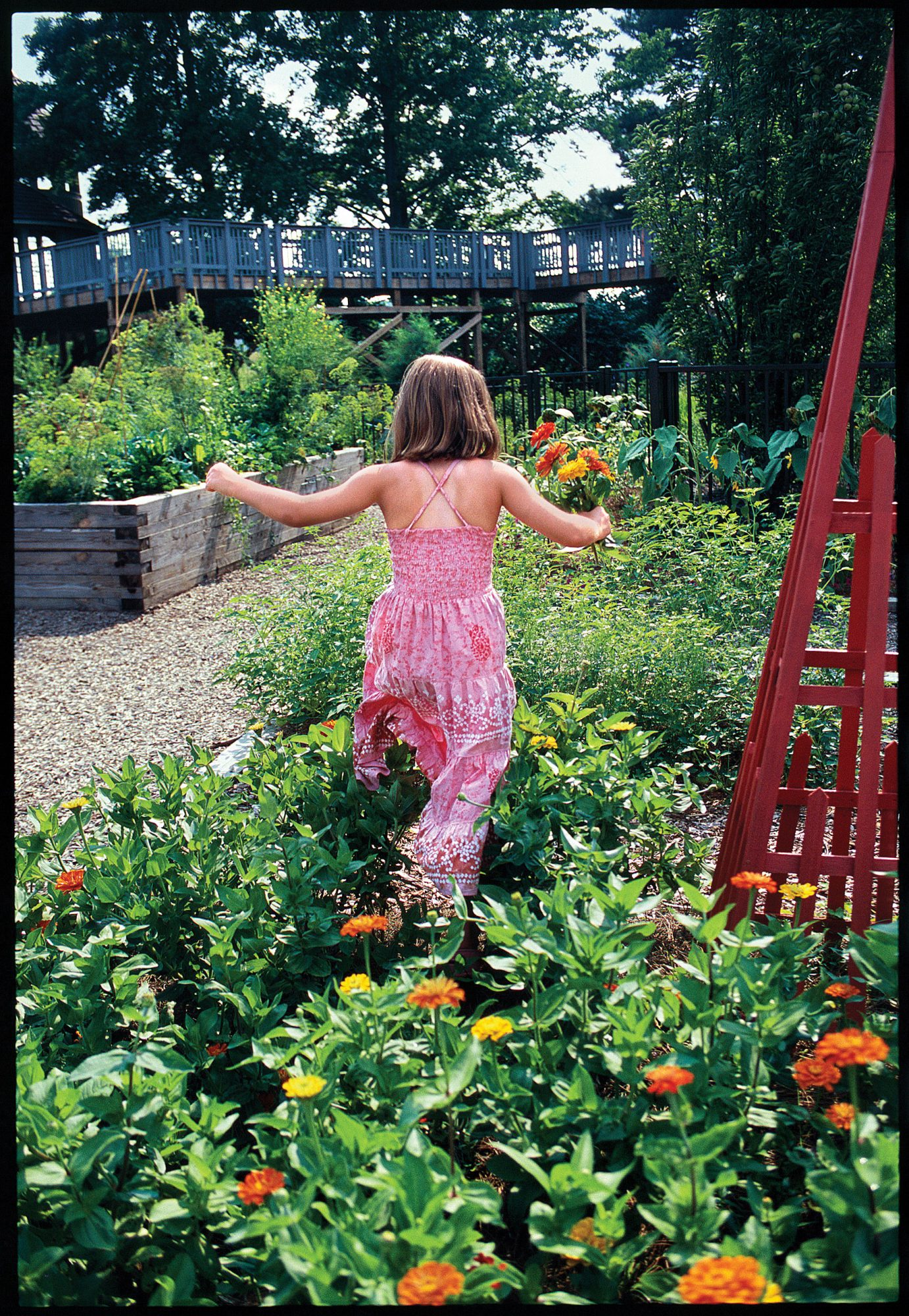 Plant and Learn at Children's Gardening Programs