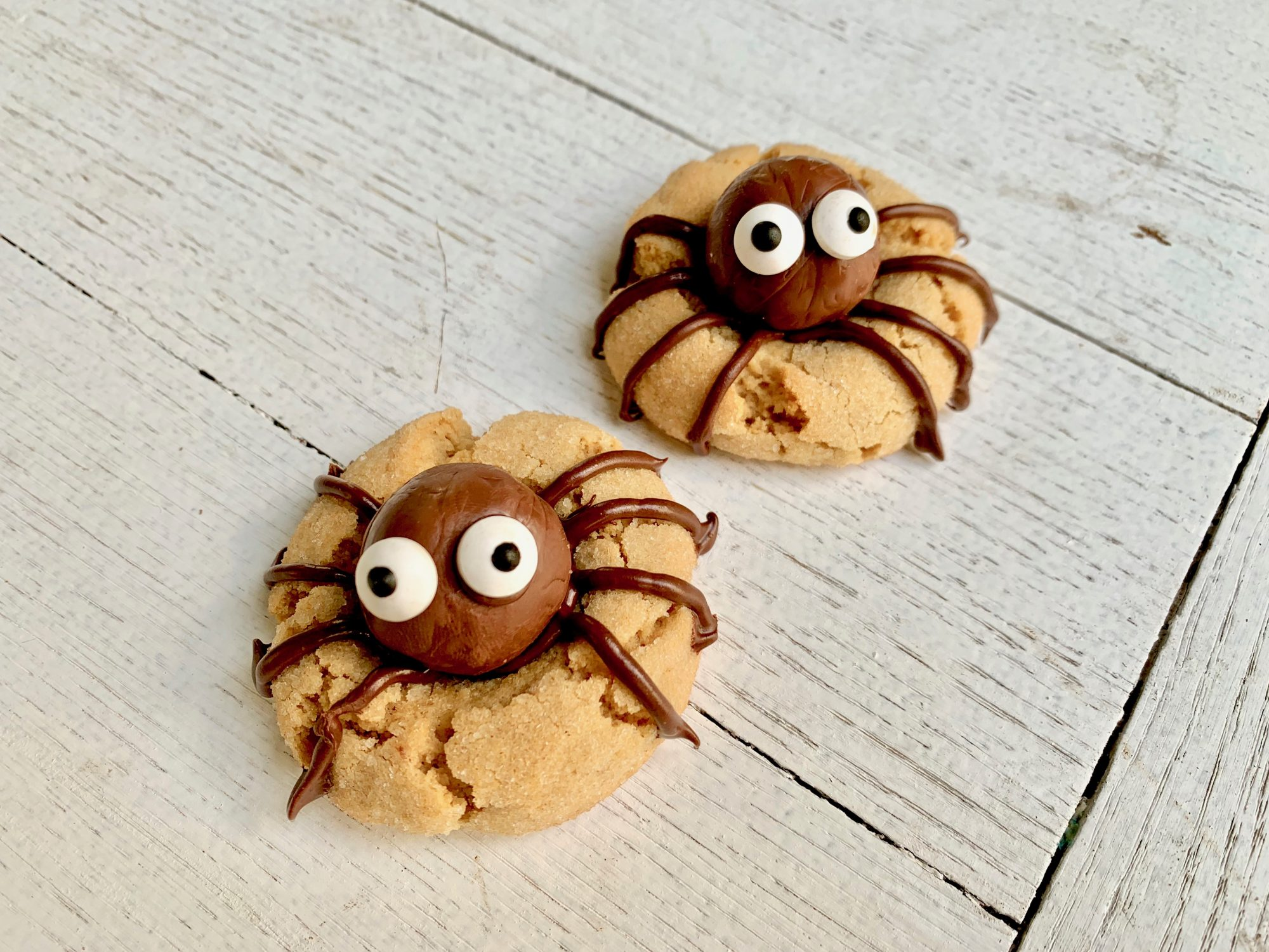 Halloween Spider Cookies Southern Living