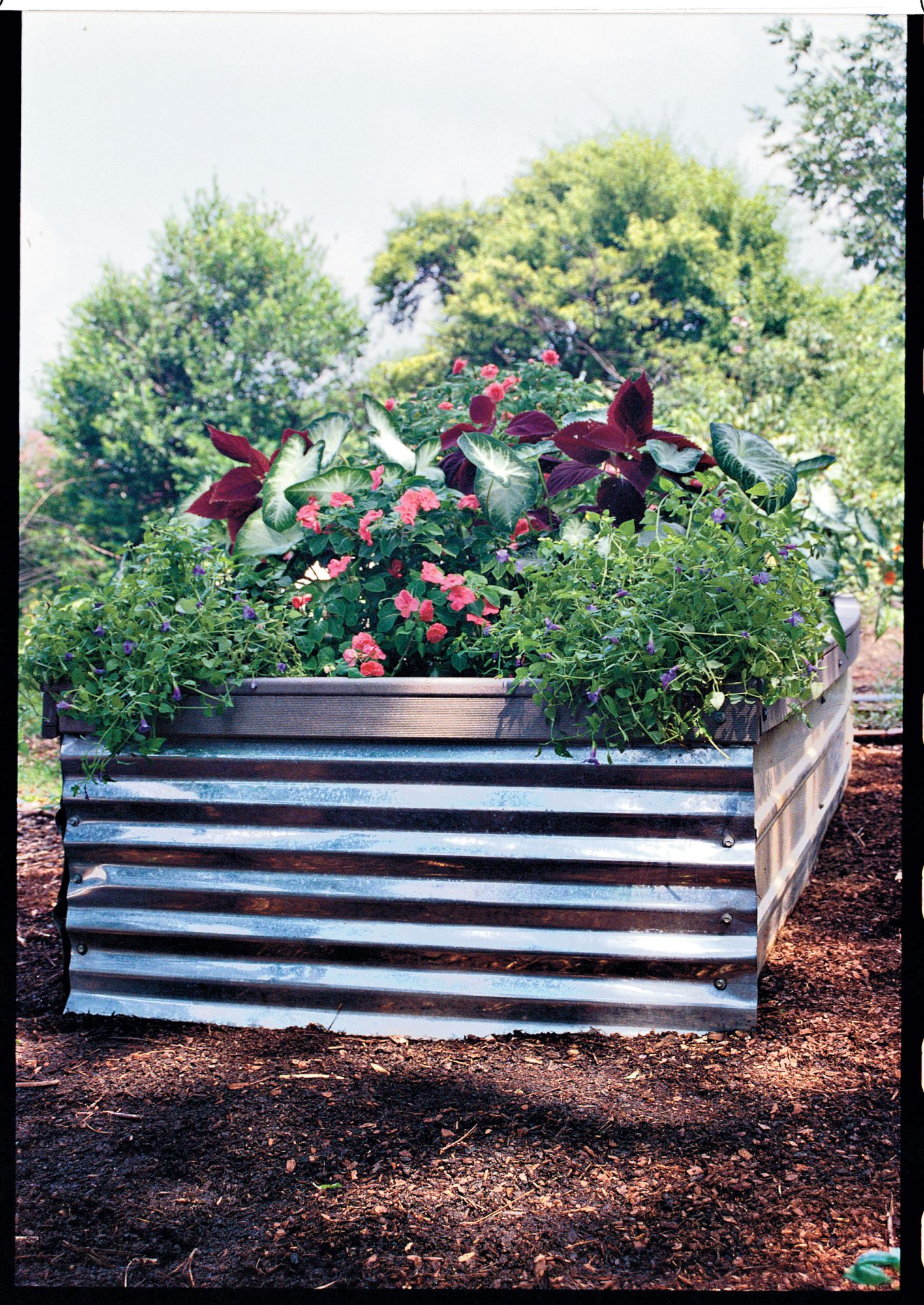 Easy, Affordable Raised Bed