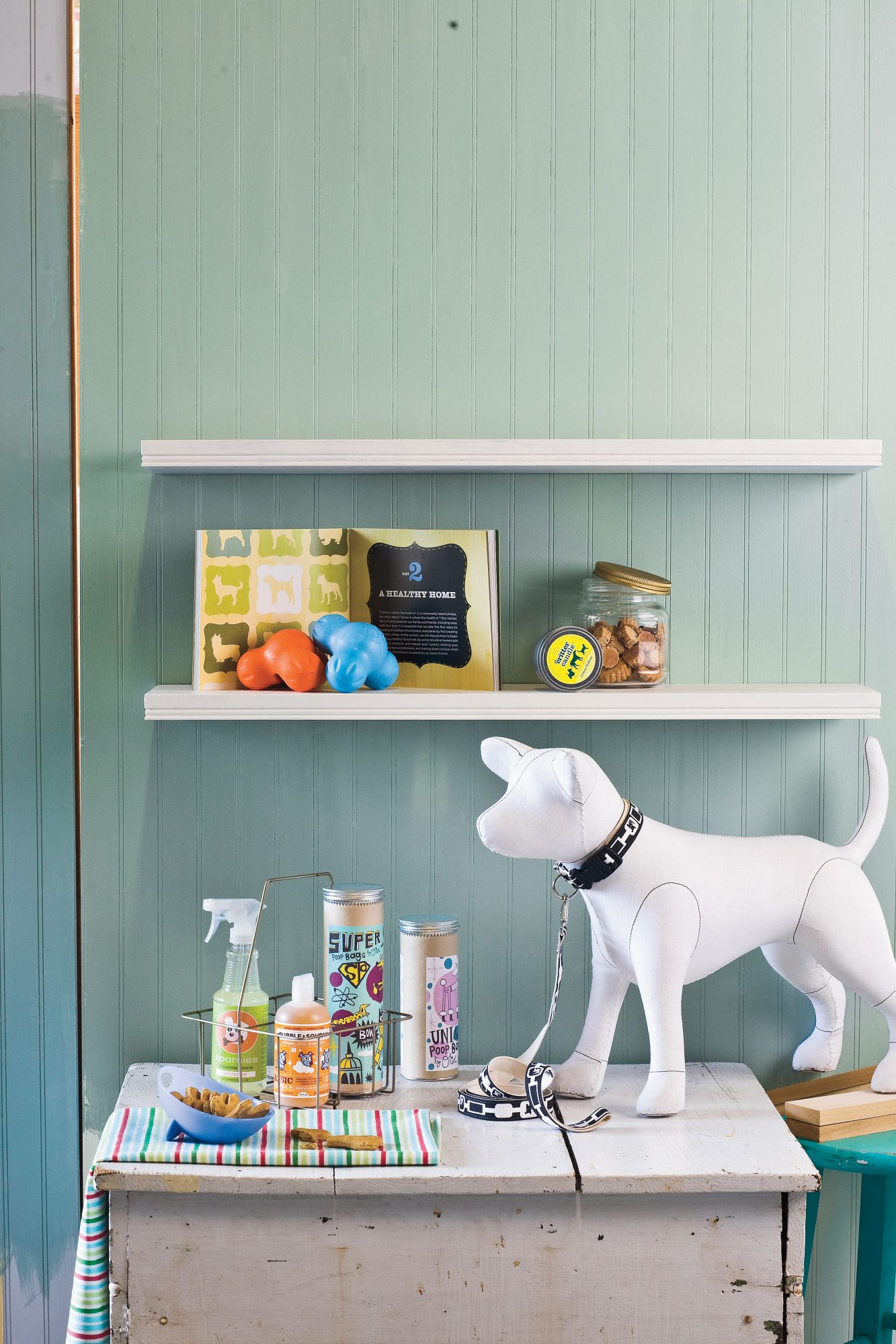Eco Dog: Healthy Living for your Pet