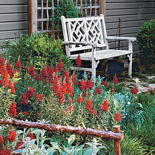 red wildflowers in a garden landscape with a teak bench set against a wall in the corner of the garden