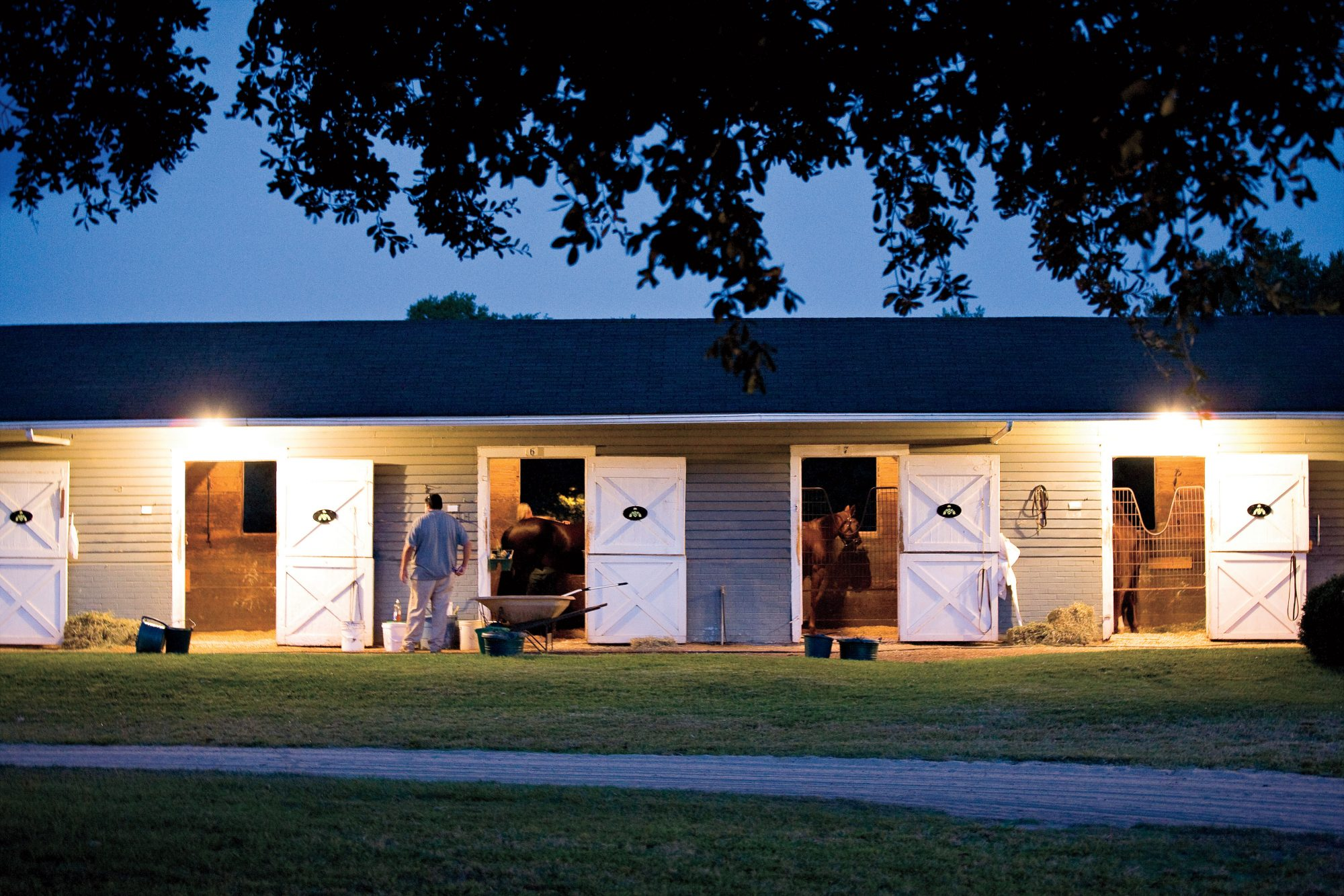 Dogwood Stable