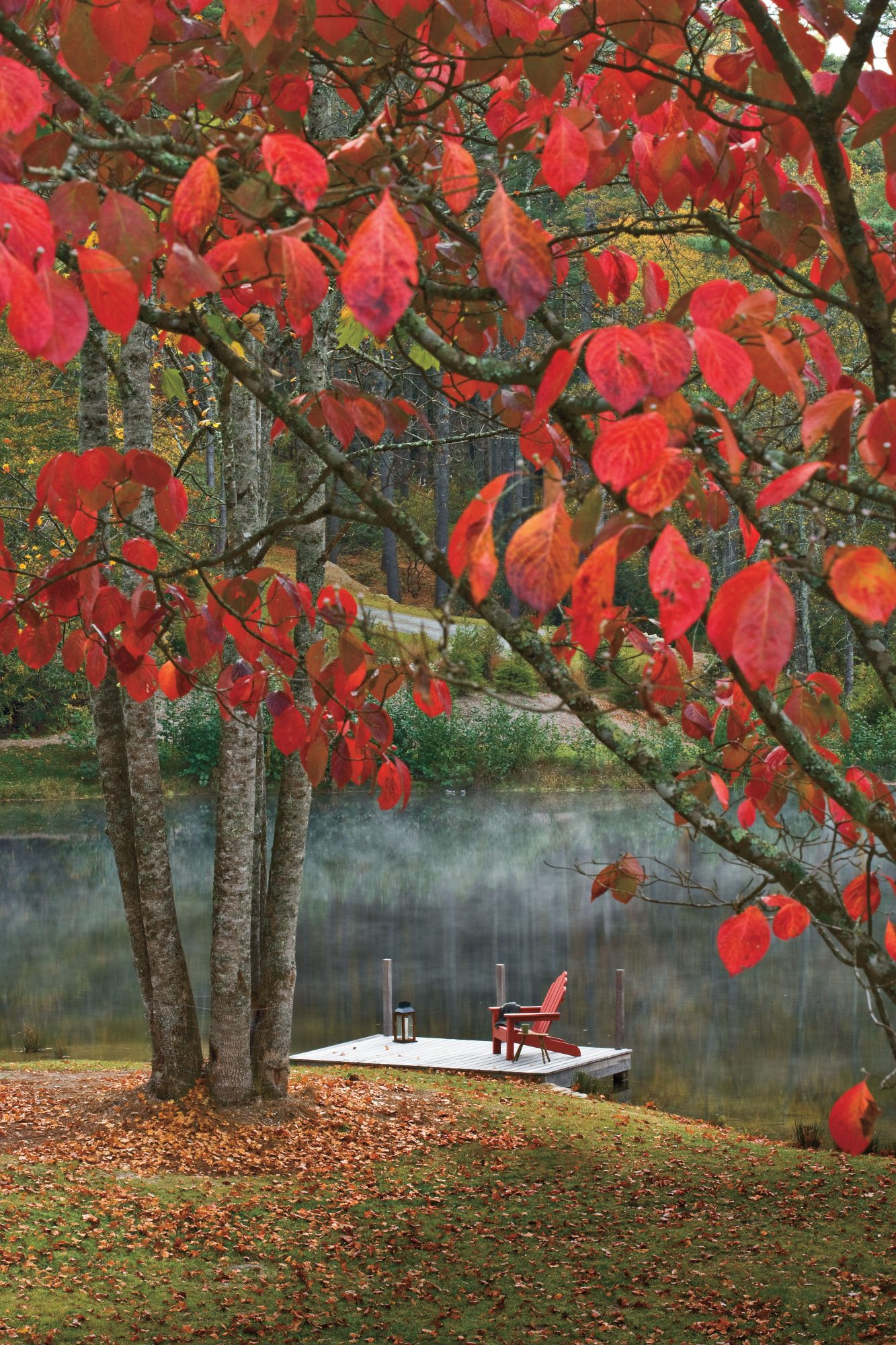 Best New Cottage: Red Chair by the Lake