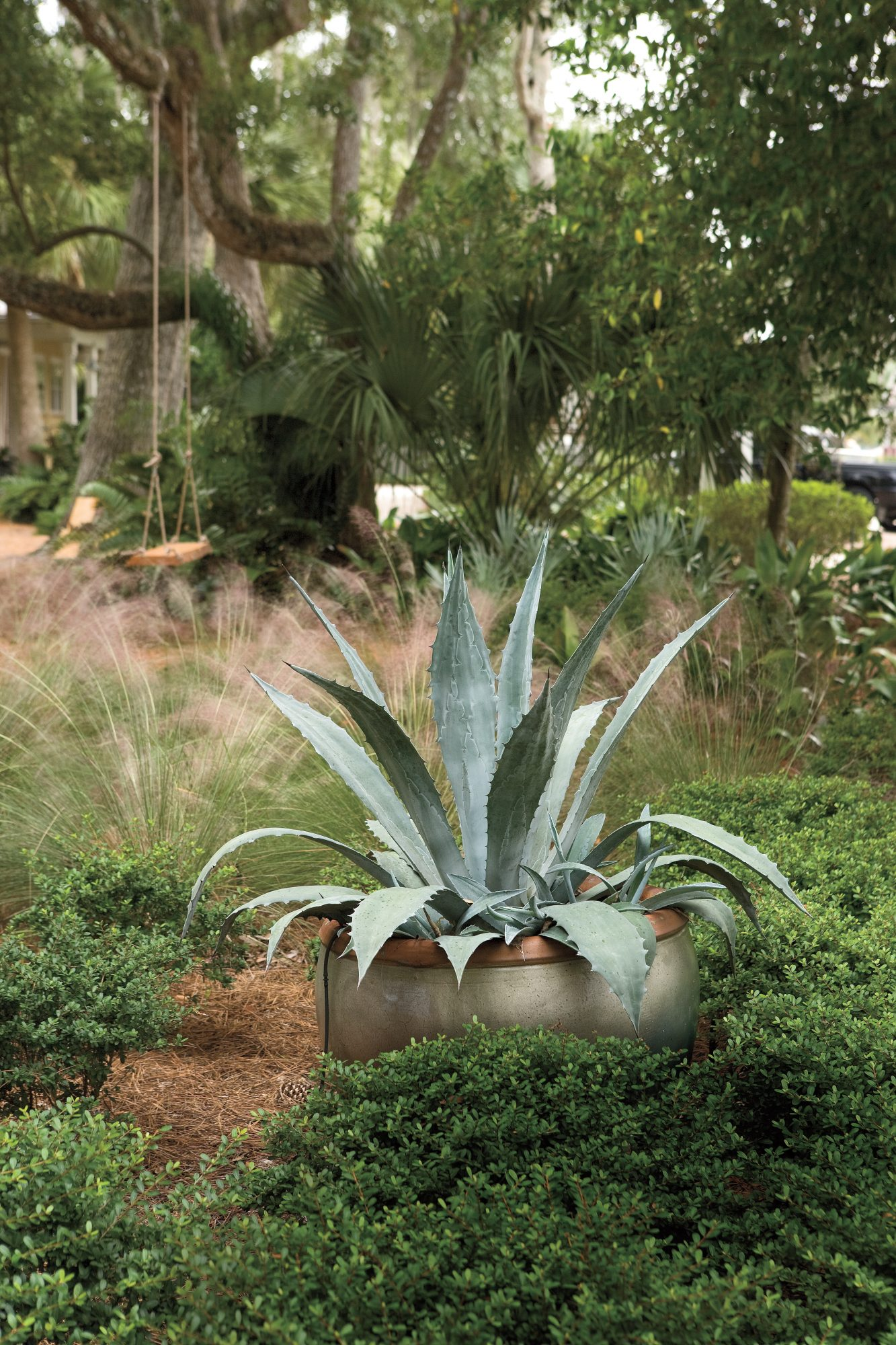 Ways to Save Water in Your Yard: Color With Containers