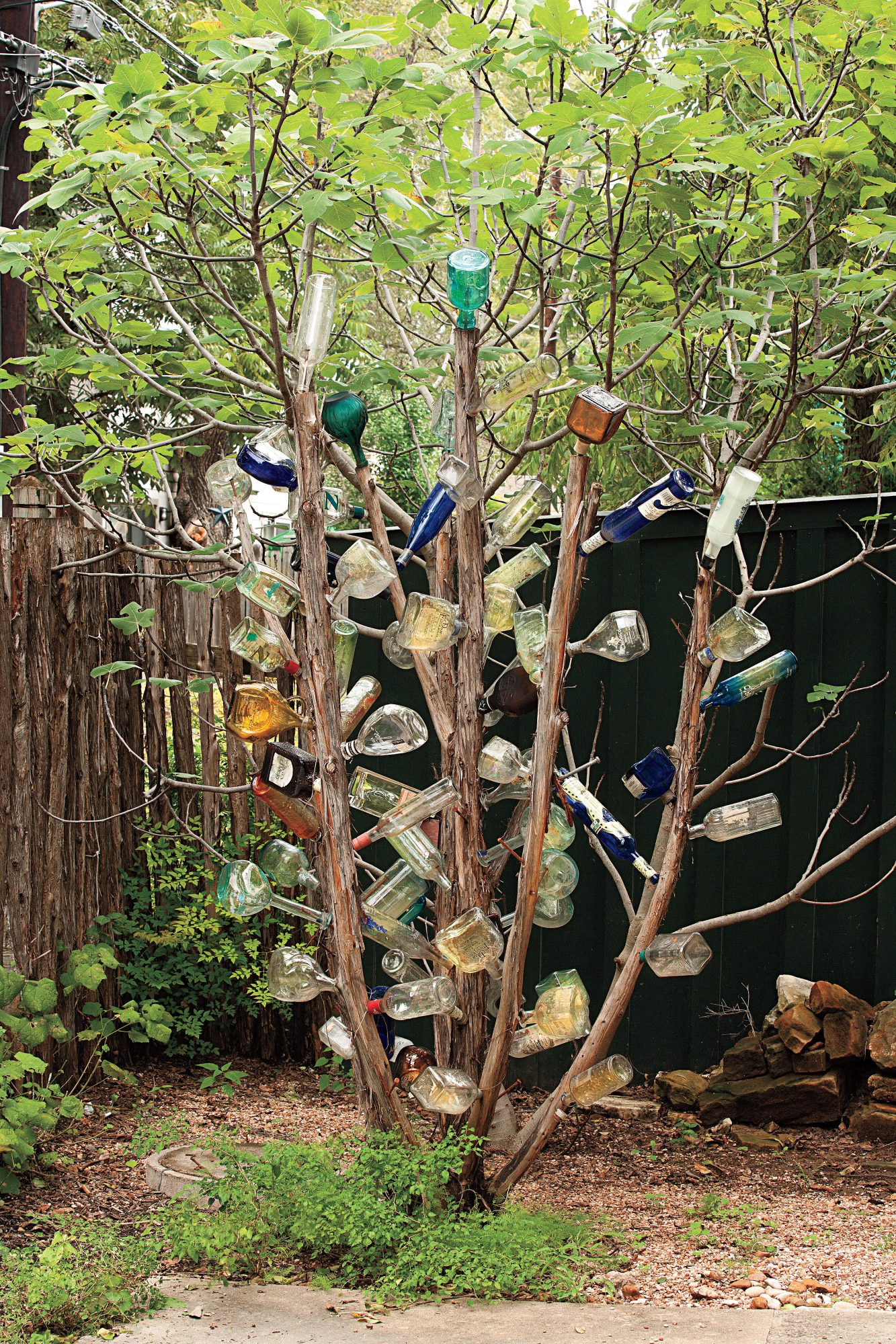 The Tequila Bottle Tree