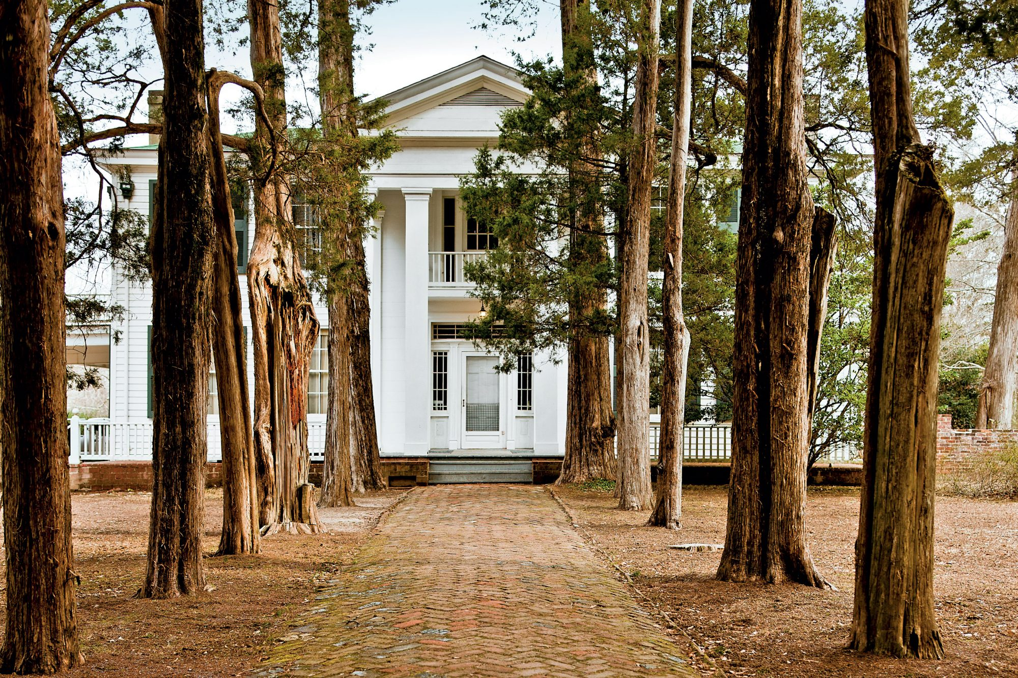 Tour Rowan Oak