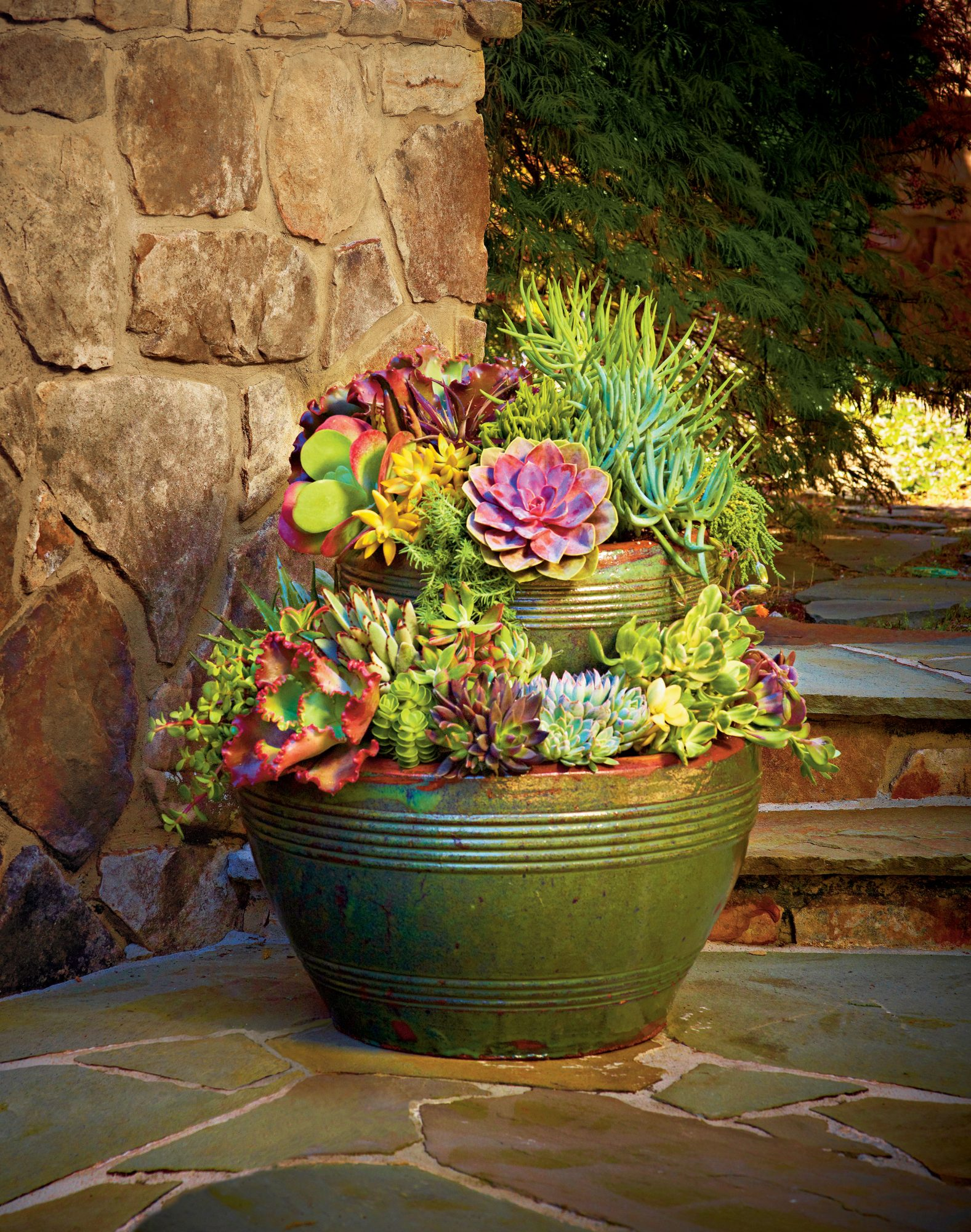 Stack Your Pots with Succulents