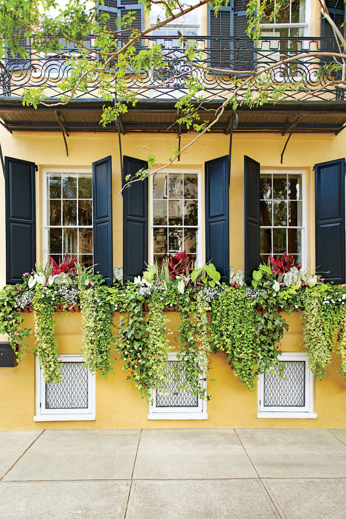 Sweeping Vines Window Box Trio